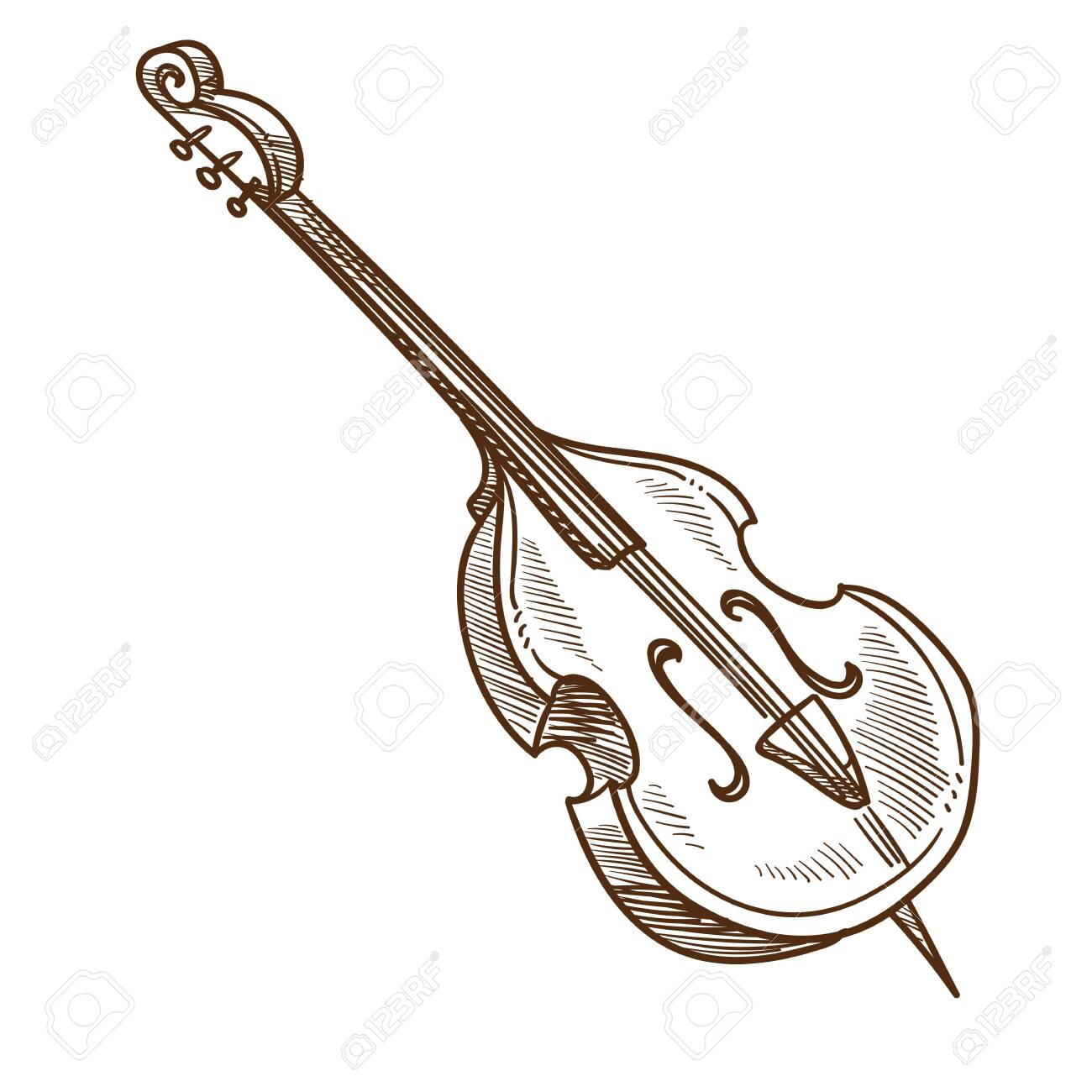 Violoncello Musical Instrument Classic Music Performance Vector