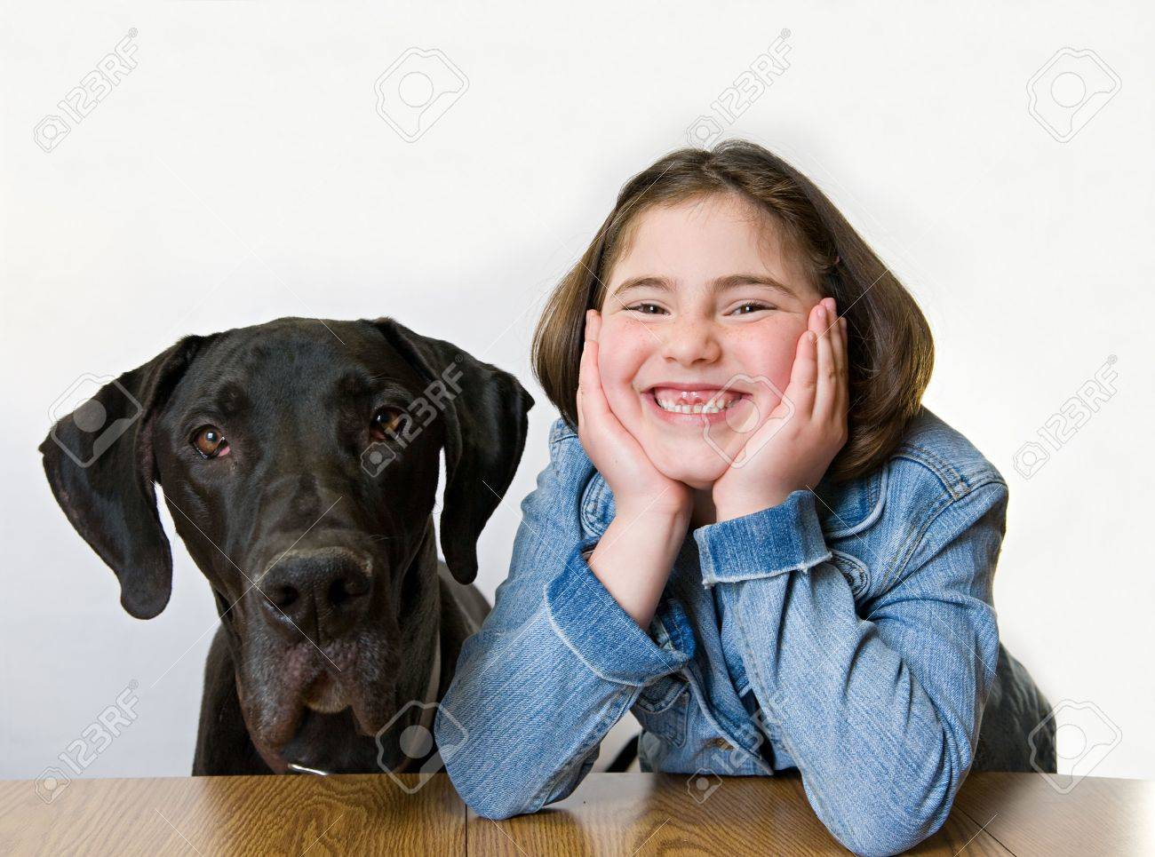 Little Girl With Her Great Dane - 4661837