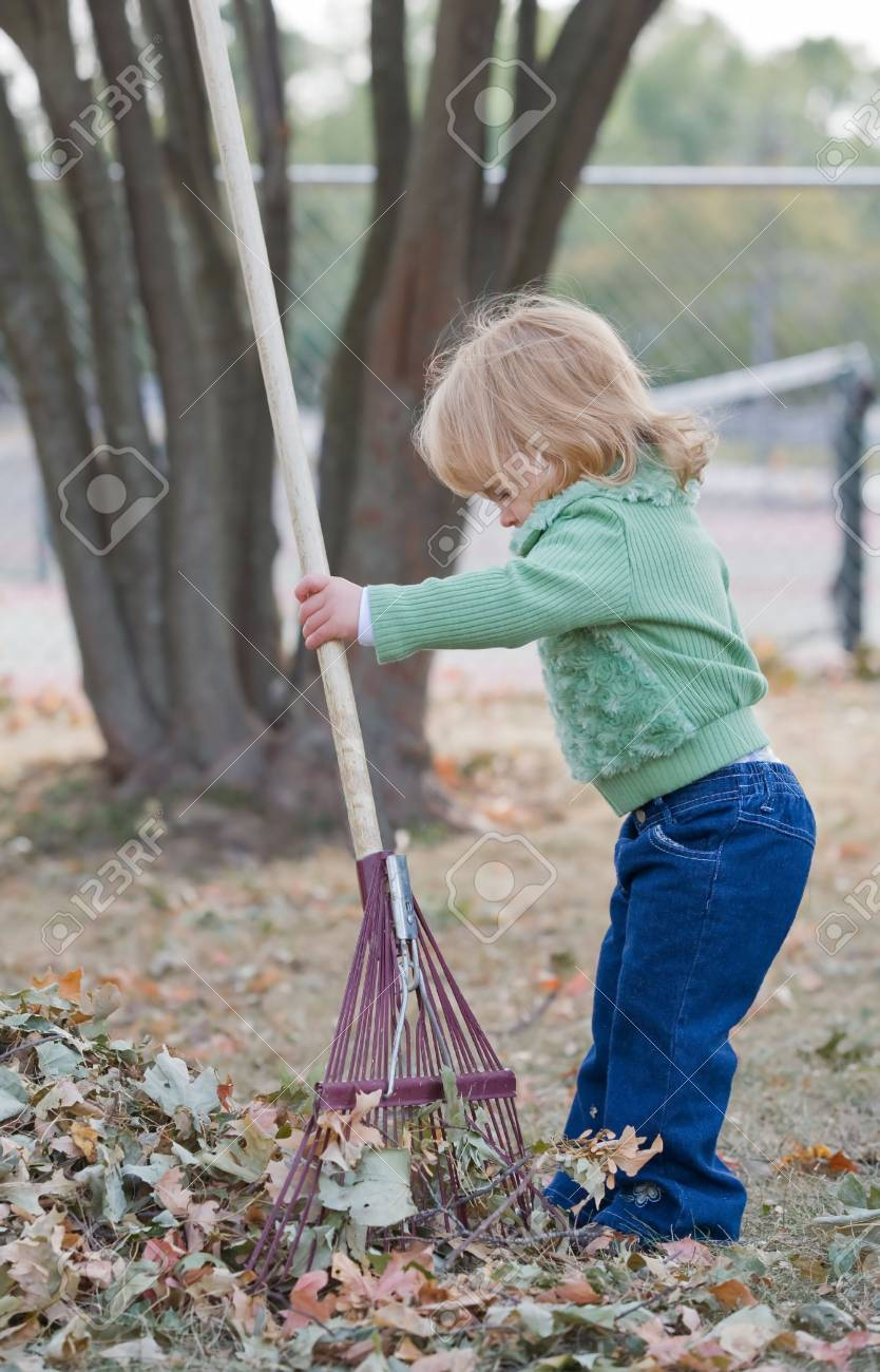 Girls Playing in Fall Leaves - 5485495
