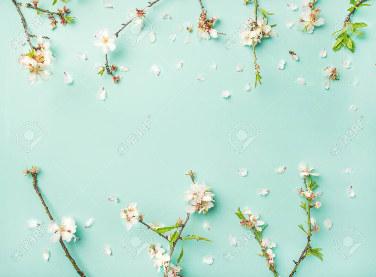 spring floral background, texture and wallpaper. flat-lay of.. stock