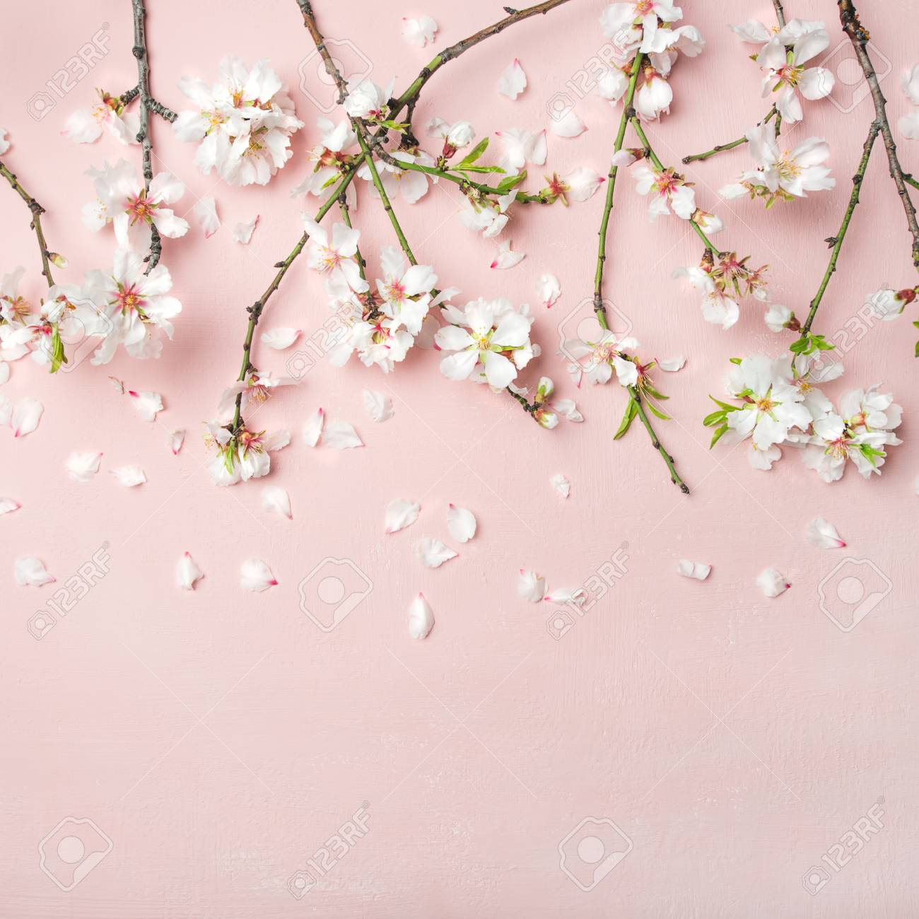 Spring floral background texture wallpaper flat lay of white spring floral background texture wallpaper flat lay of white almond blossom flowers mightylinksfo