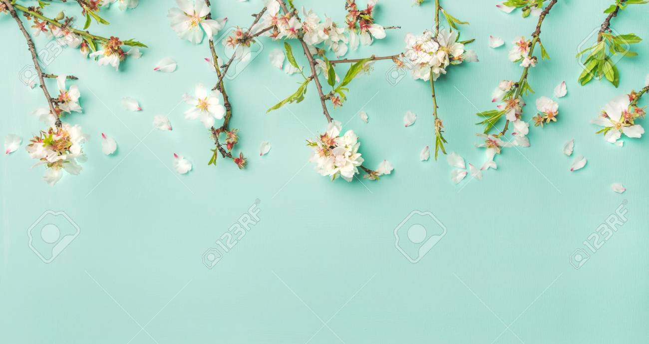 Spring Floral Background Texture And Wallpaper Flat Lay Of