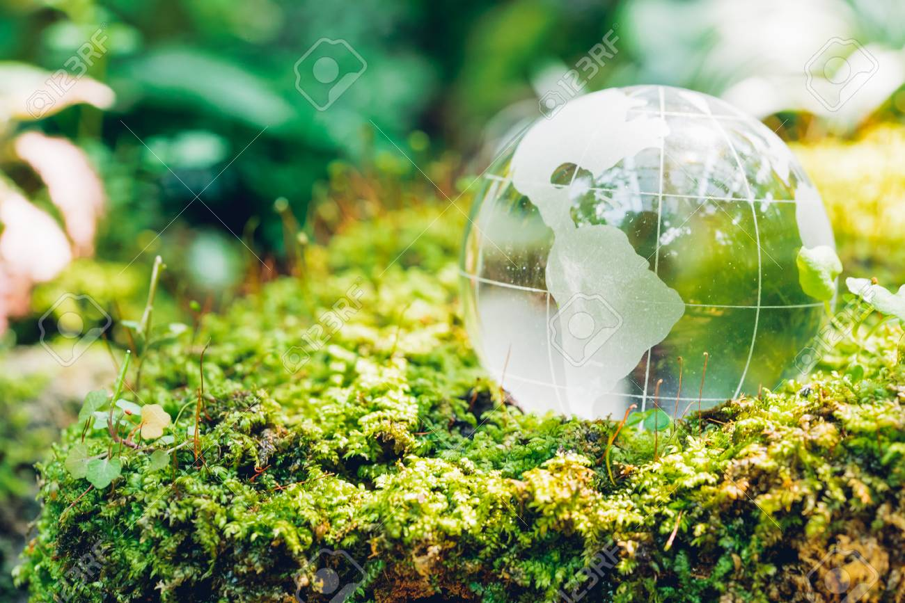 Globe glass in grass forest on nature background, Environment Day Concept - 122485690