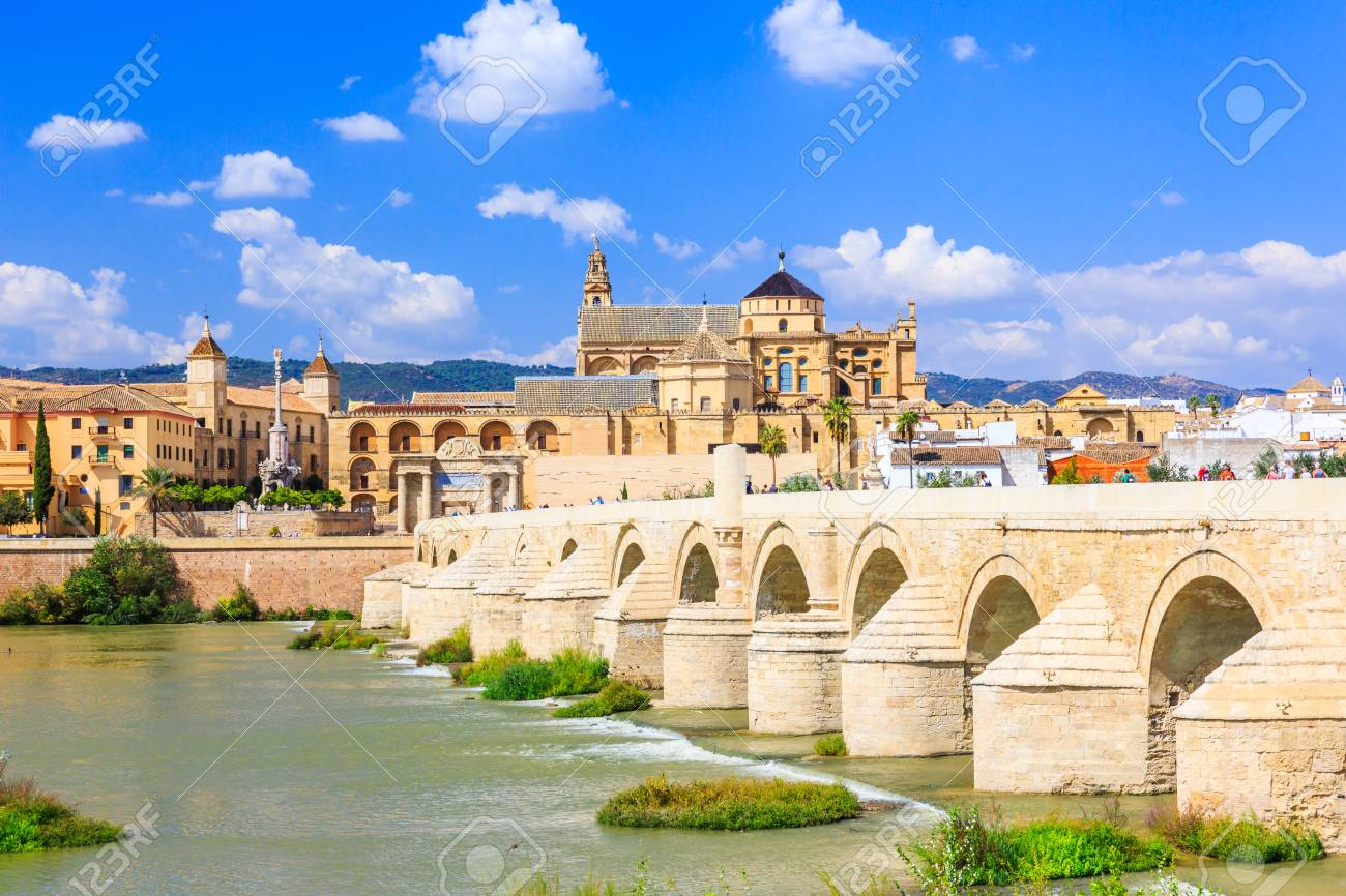 Image result for The Roman bridge in Cordoba