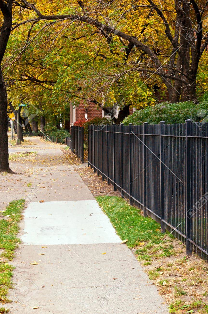 lack iron fence runs along this tree lined sidewalk in boston massachusetts Stock Photo - 3836100