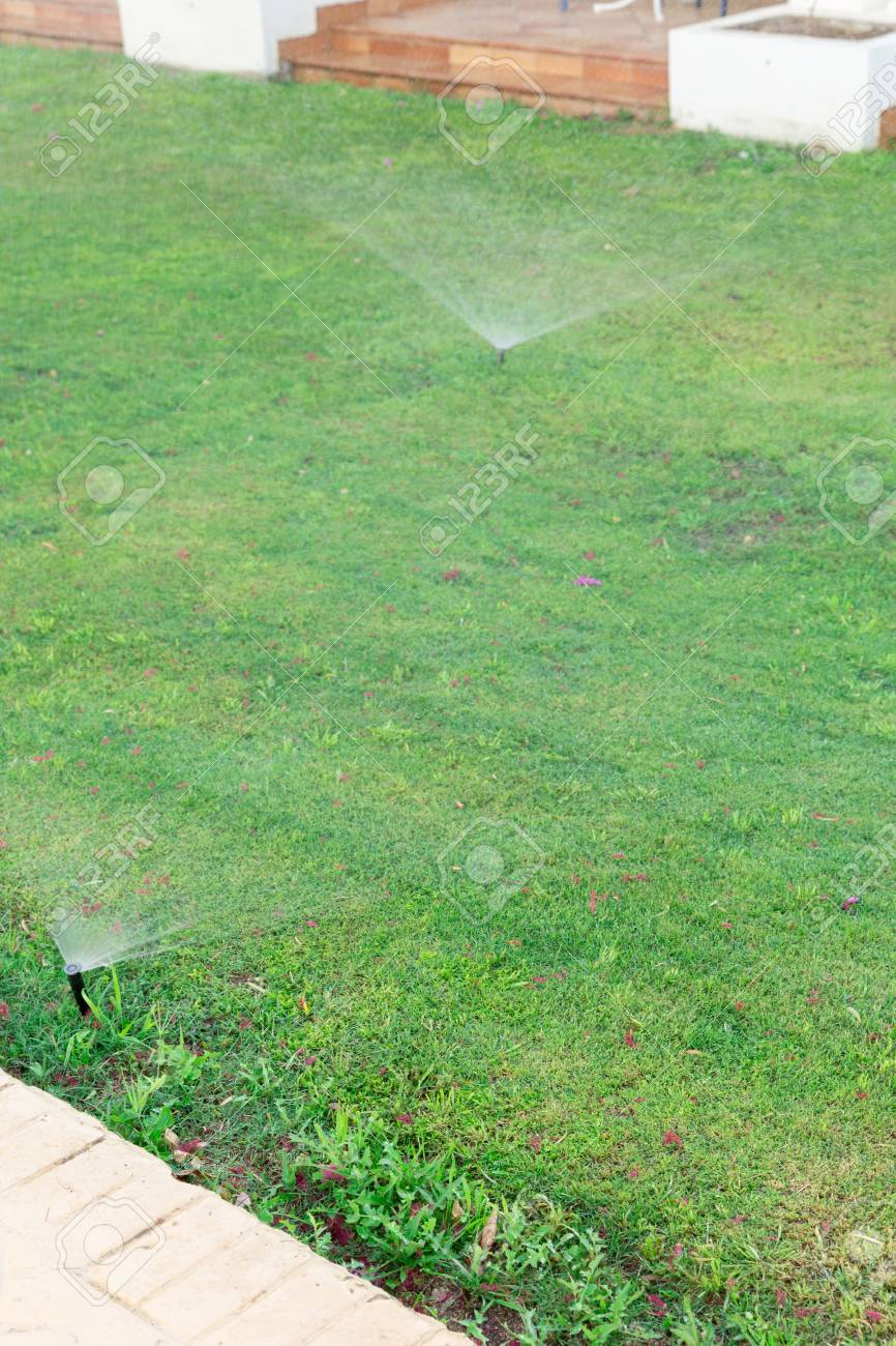Sprinkler in garden watering the lawn. Automatic watering lawns concept. - 120717862
