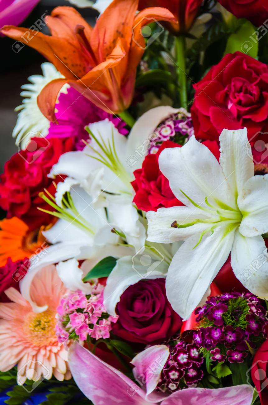 A Beautiful Composition Of Flowers ,colors And Shapes Stock Photo ...