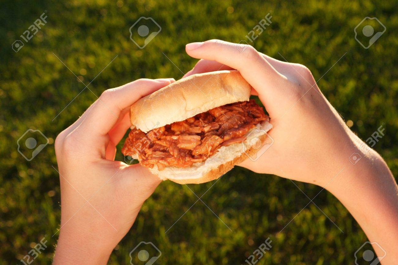 a pair of hand is holding a pulled pork sandwich Stock Photo - 2735642
