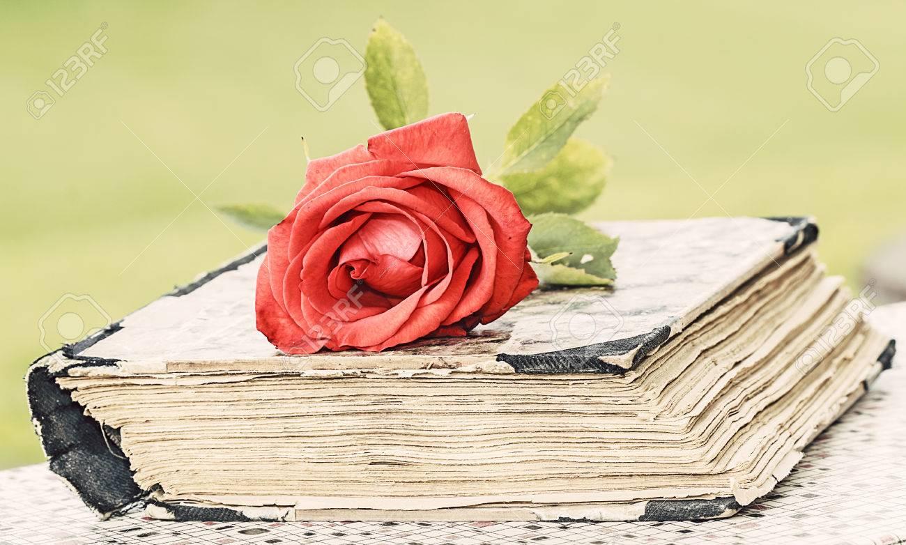 Millésime livre fermé le bureau en bois avec une rose rouge banque