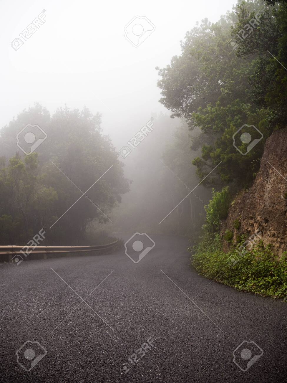 Lonely mountain road covered with fog - 141966801