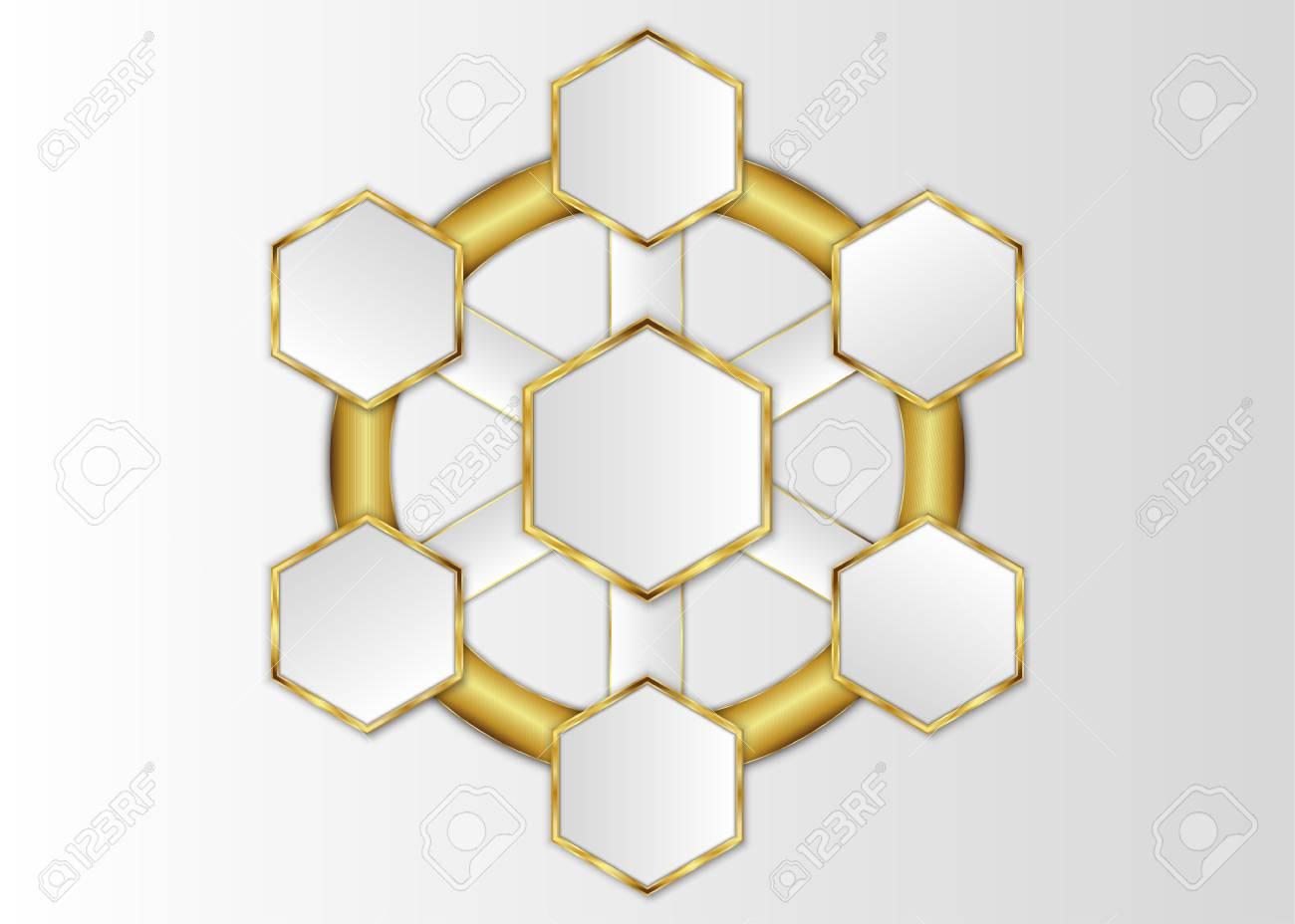 Plantilla De Hexágono, Etiqueta En Blanco Hexagonal Para Diseño O ...