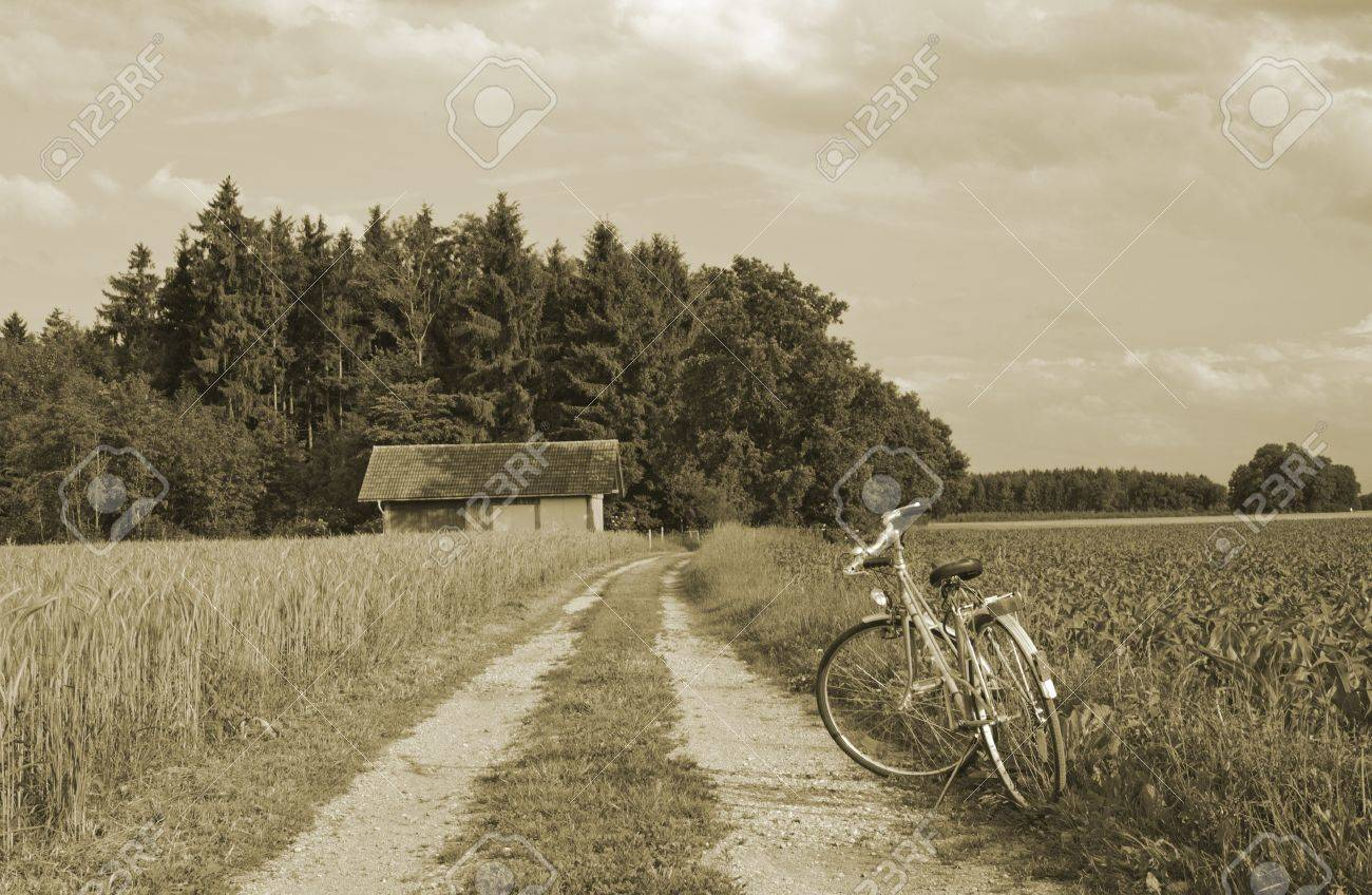 Bike on green wheat farm in germany,europe Stock Photo - 12411977