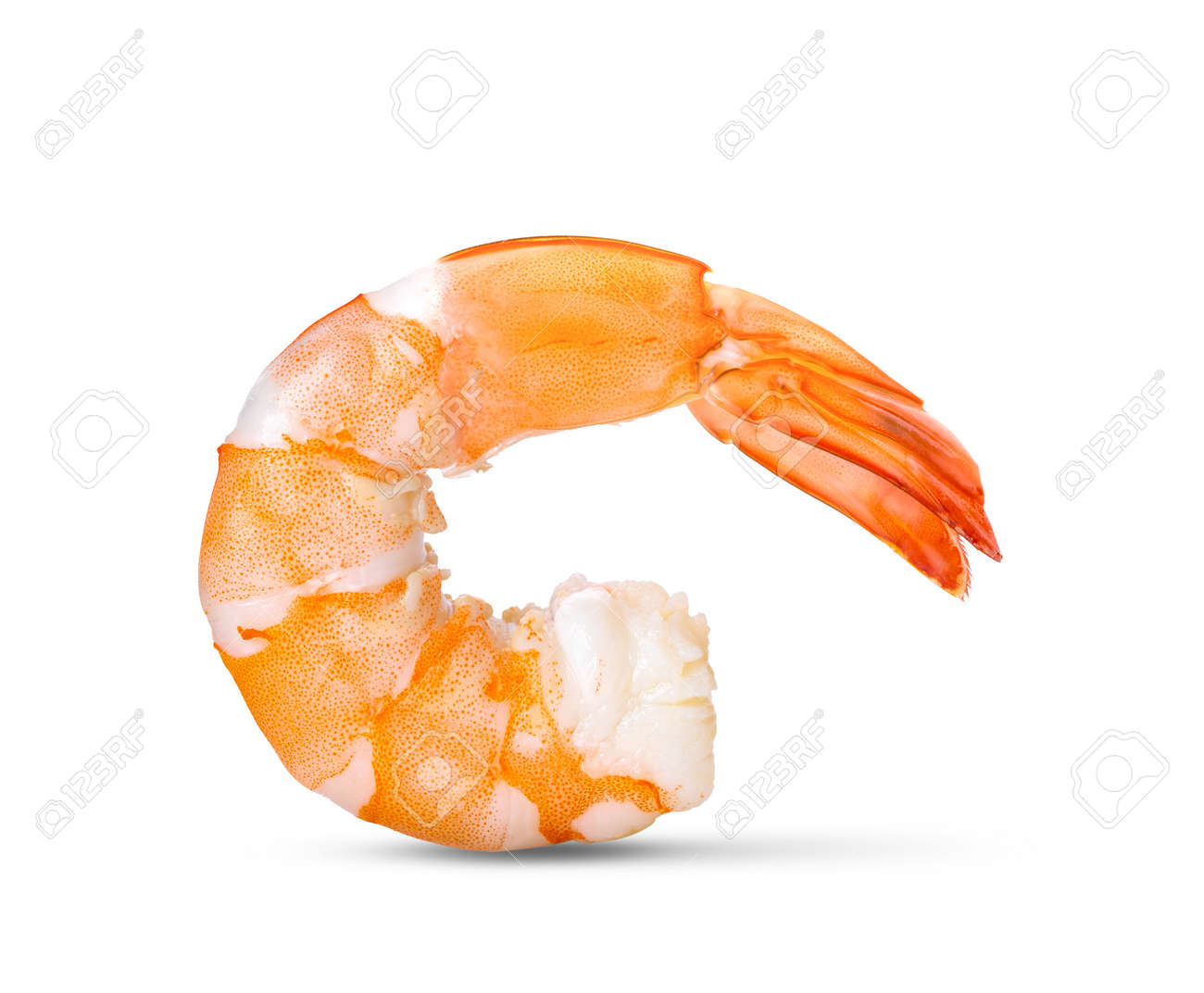 Cooked shrimps isolated on white background. - 156628266