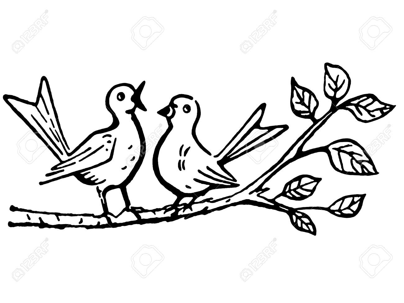 A black and white version of two birds on a tree branch singing Stock Photo - 14911834