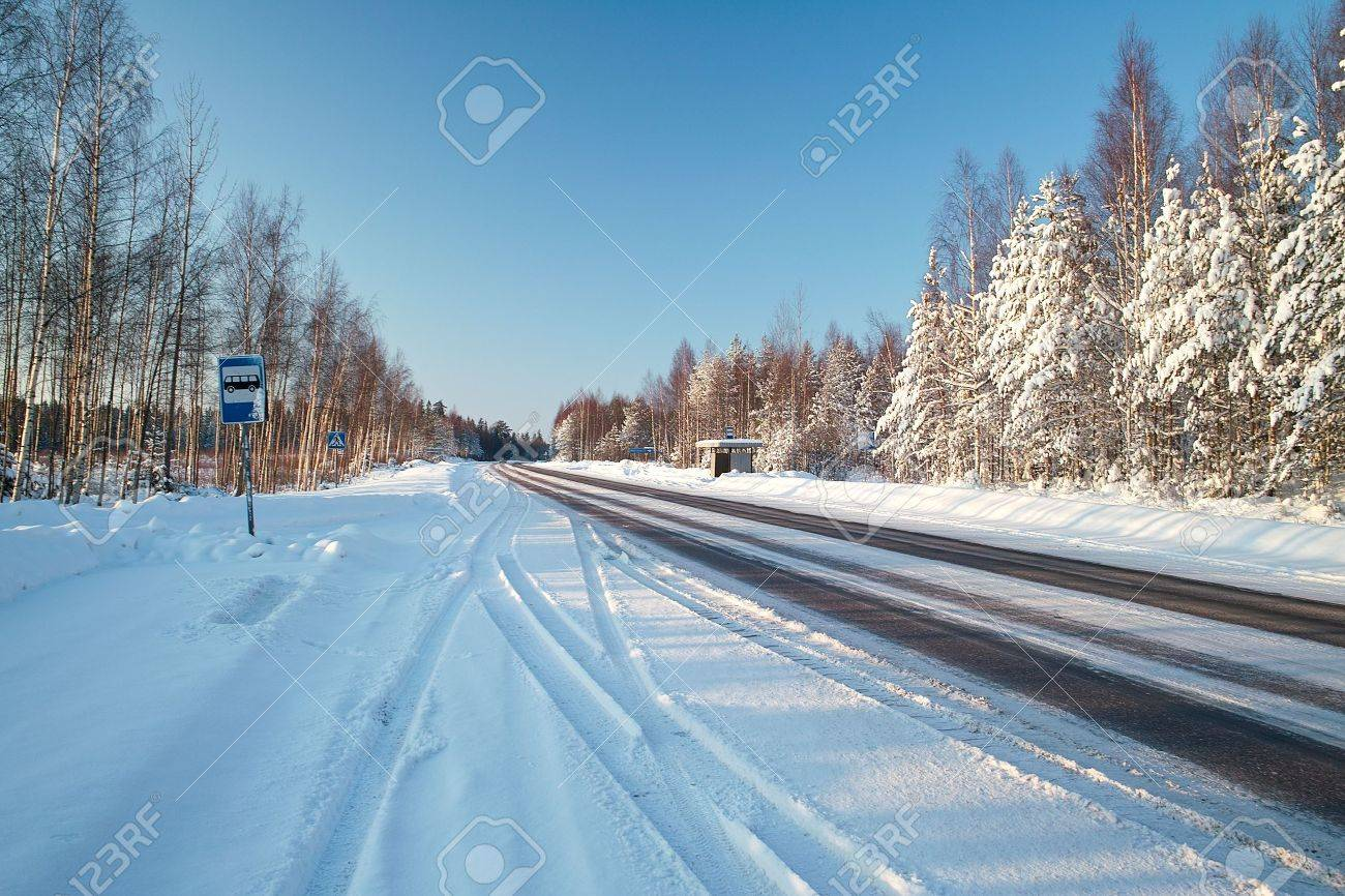 Road through snowy forest in sunny winter day Stock Photo - 6177955