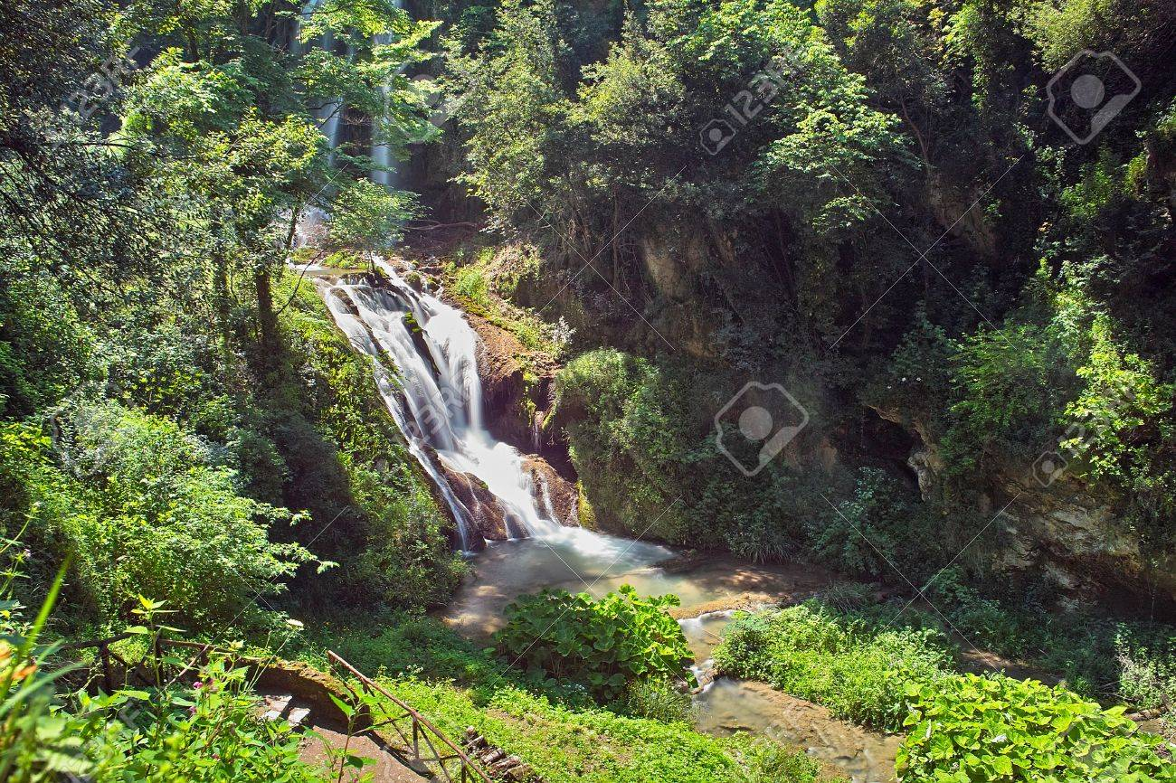 Big waterfall among the trees and bushes Stock Photo - 7502114