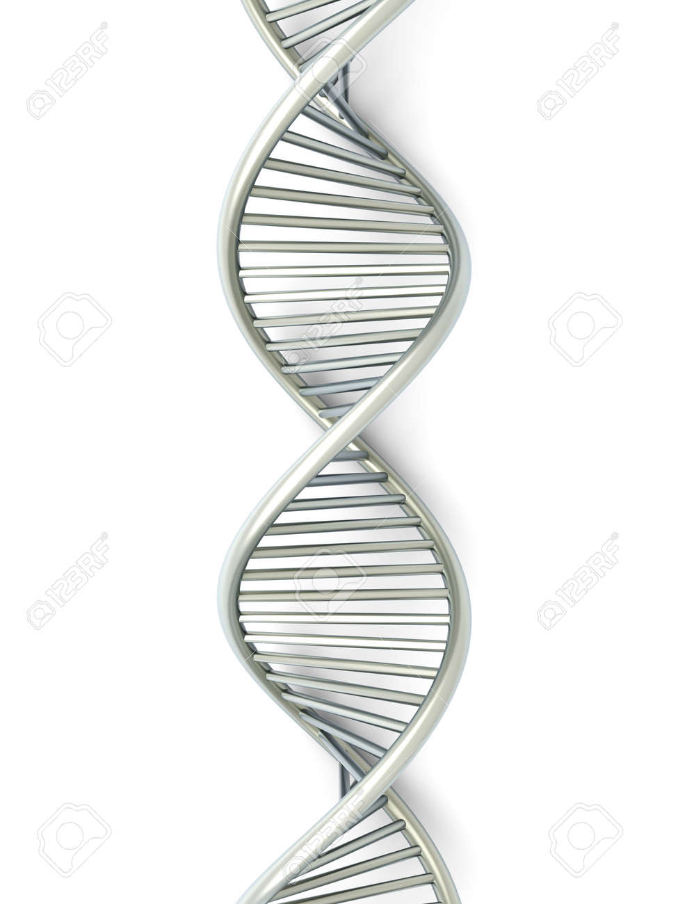 A symbolic DNA model. 3D rendered illustration. Isolated on white. Stock Photo - 10126976
