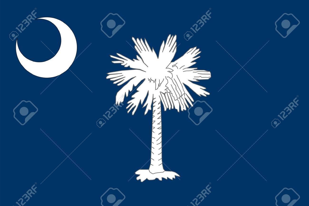 South Carolina state flag of America, isolated on white background. - 8291334