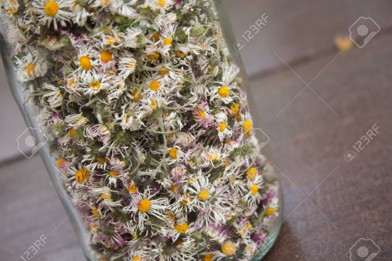 Dry Daisy Flowers In A Glass Jar On A Dark Wooden Table Dried