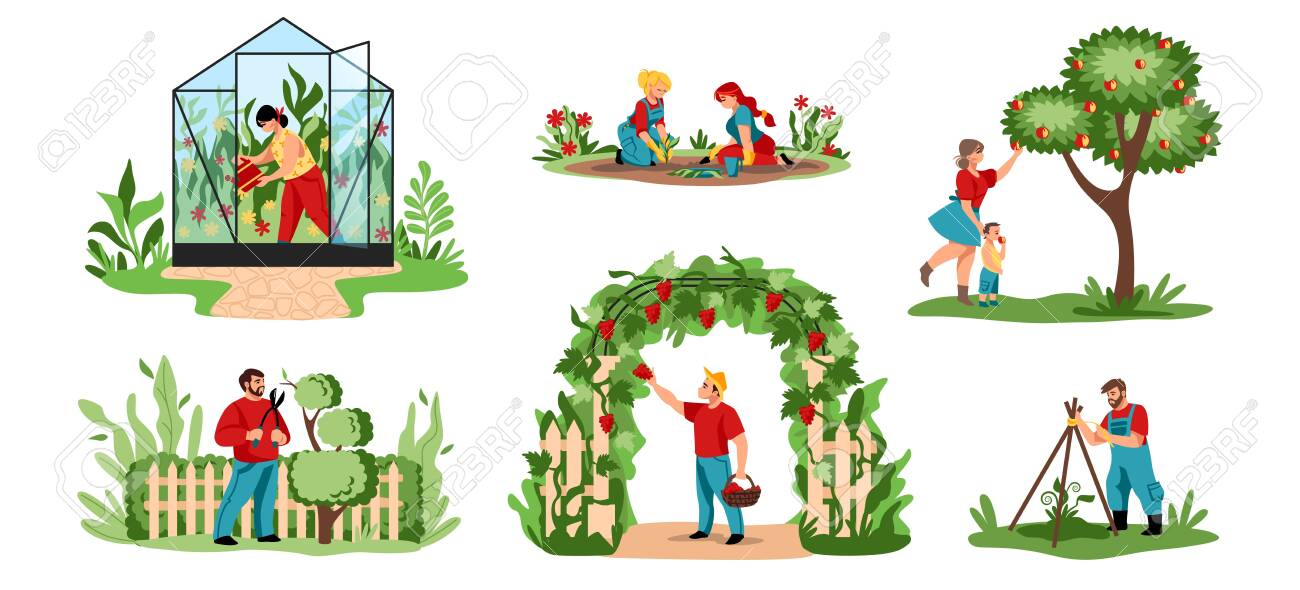 Planting Cartoon Agricultural Workers Cutting Trees And Bushes Royalty Free Cliparts Vectors And Stock Illustration Image 147187741 987 x 1500 jpeg 279 кб. planting cartoon agricultural workers cutting trees and bushes