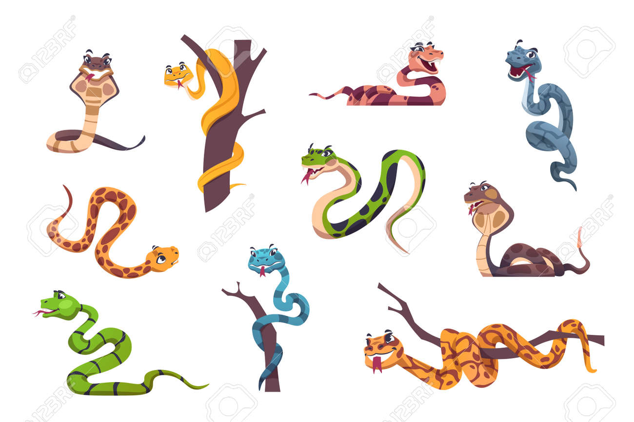 Snakes character. Cute animal mascot with funny face emotions for kids illustration. Wild reptile of tropical nature. Striped or spotted creeping predators. Vector exotic serpents set - 173179120