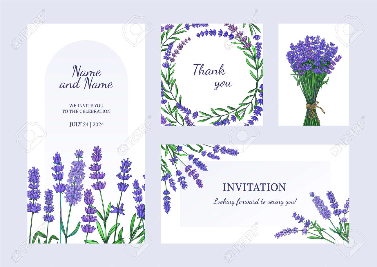 Lavender posters. Greeting card and invitation with bouquets of odorous garden flowers. Purple blooming plants. Celebration banners set with blossom herbs. Vector brochures and flyers - 173374317