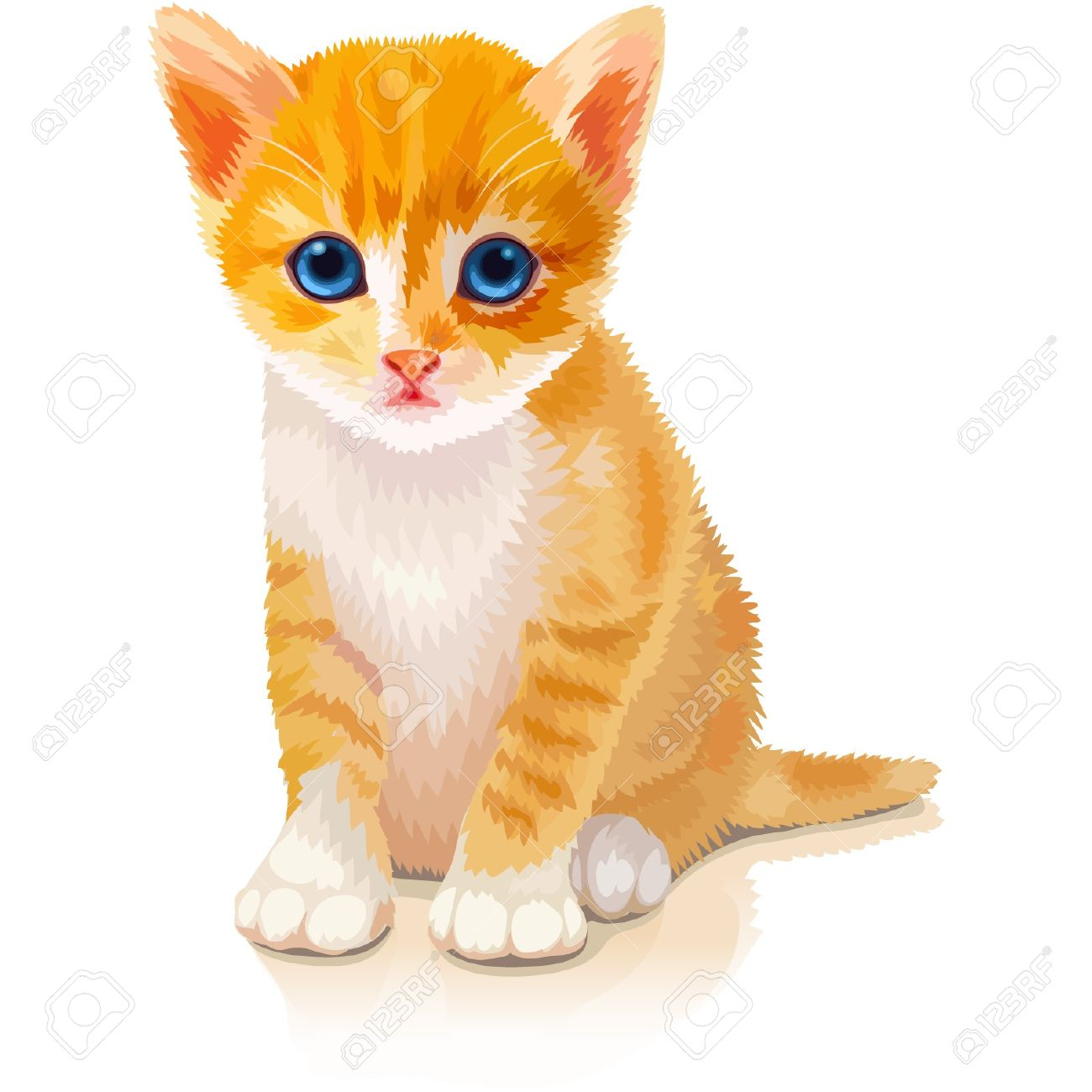 cute orange kitten royalty free cliparts vectors and stock