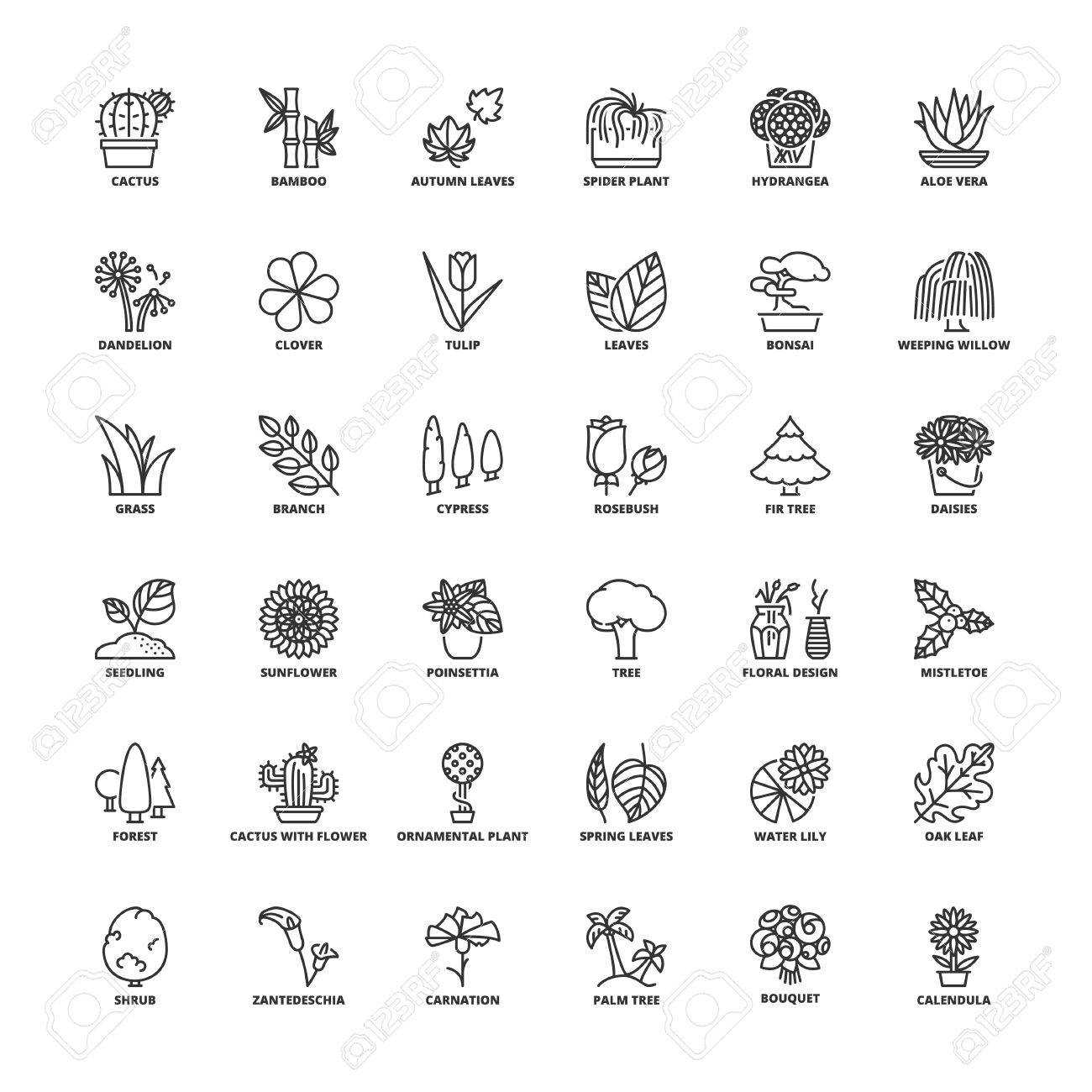 Outline Icons Set Flat Symbols About Flowers Plants And Trees
