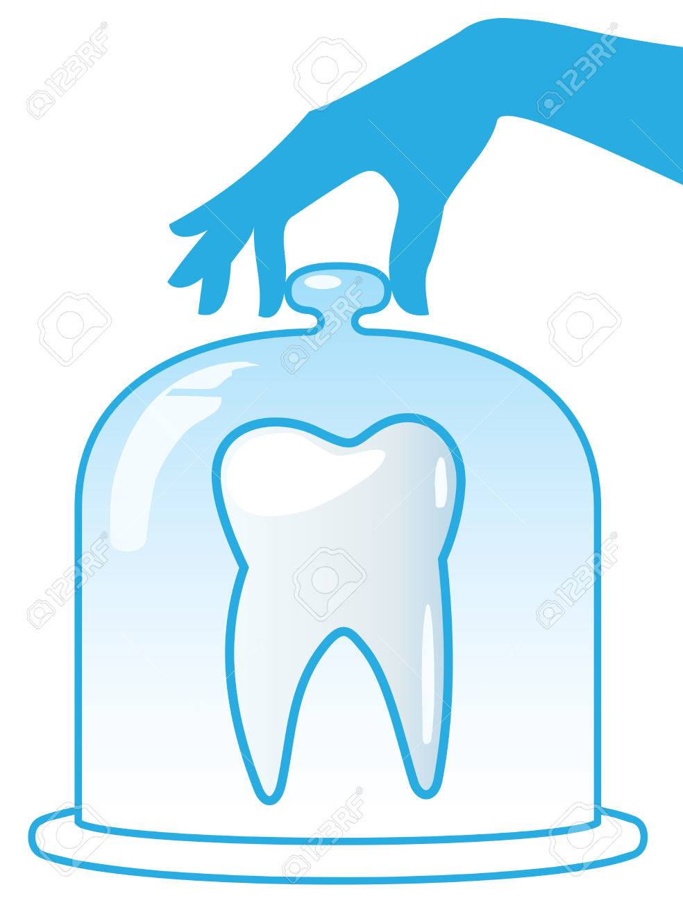 A healthy tooth is protected by a glass dome. Dentistry. Stock Vector - 8711187