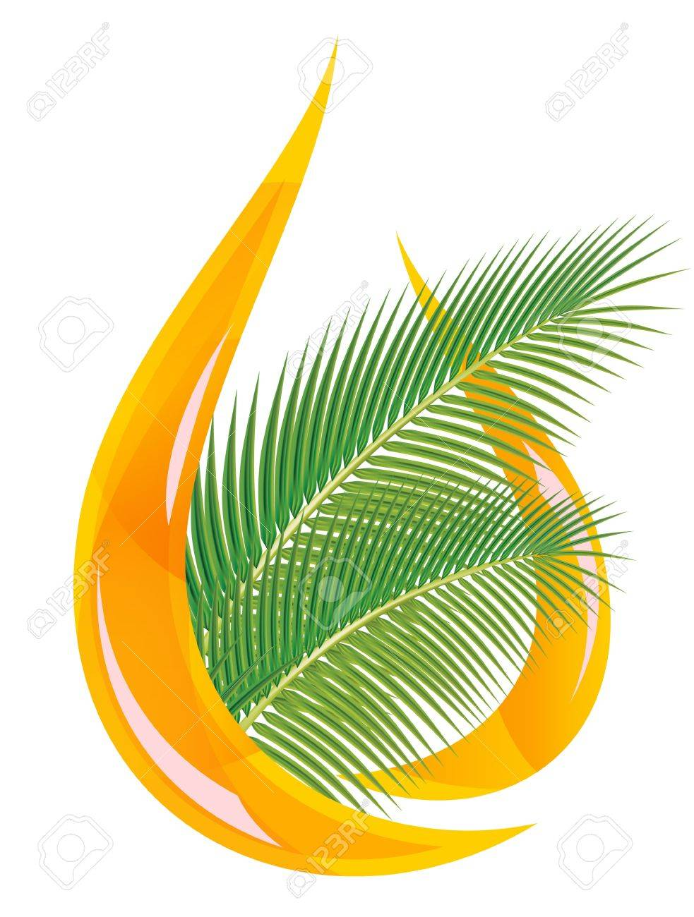 Palm oil. Stylized drop of oil and palm leaves. Vector illustration. Stock Vector - 9251378