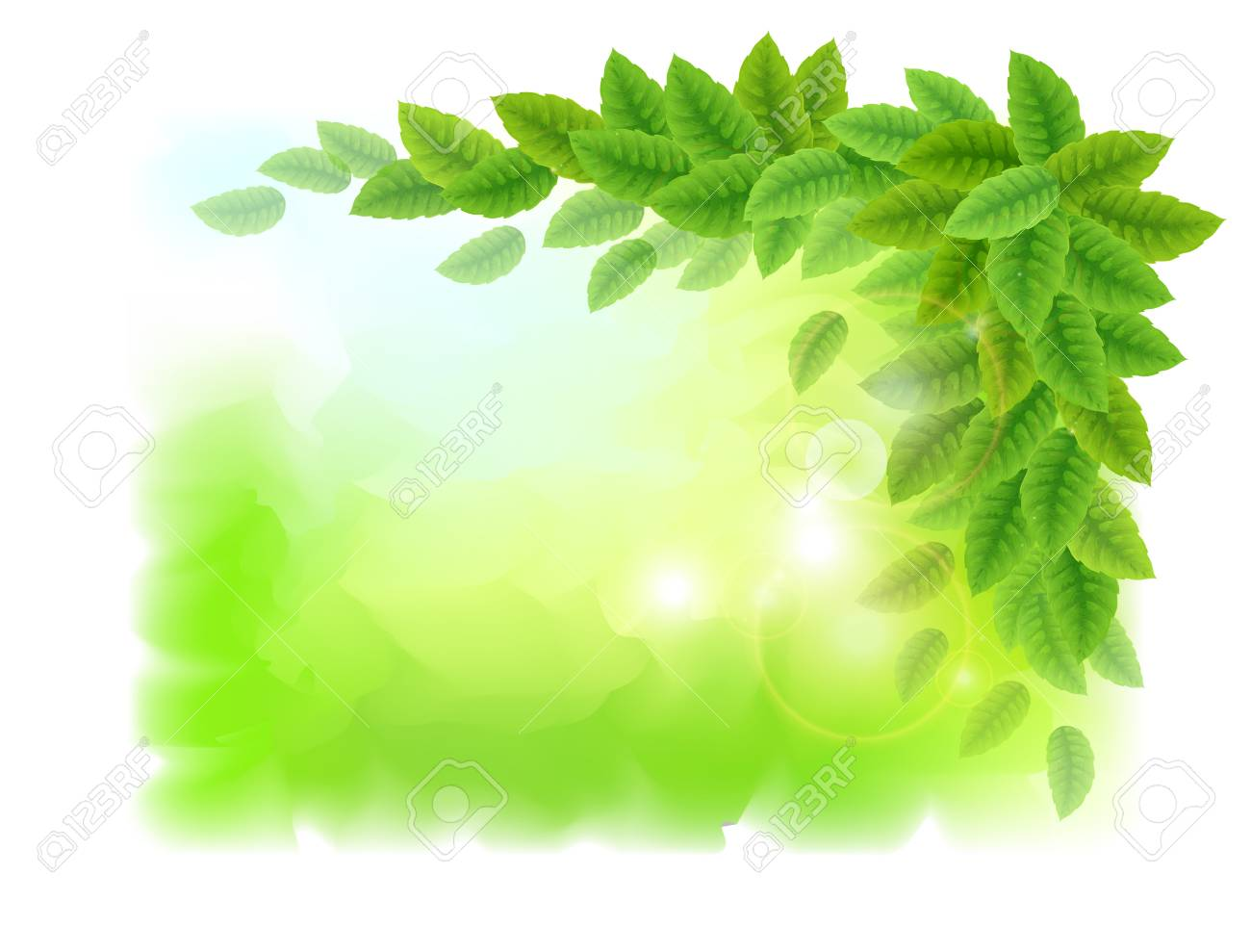 Sunny background with green leaves  Vector illustration Stock Vector - 18920101