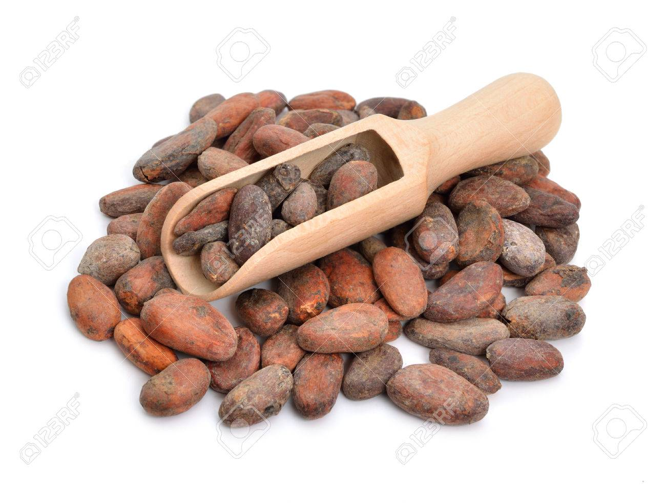 Cocoa beans before roast. Isolated on white background. - 44810204
