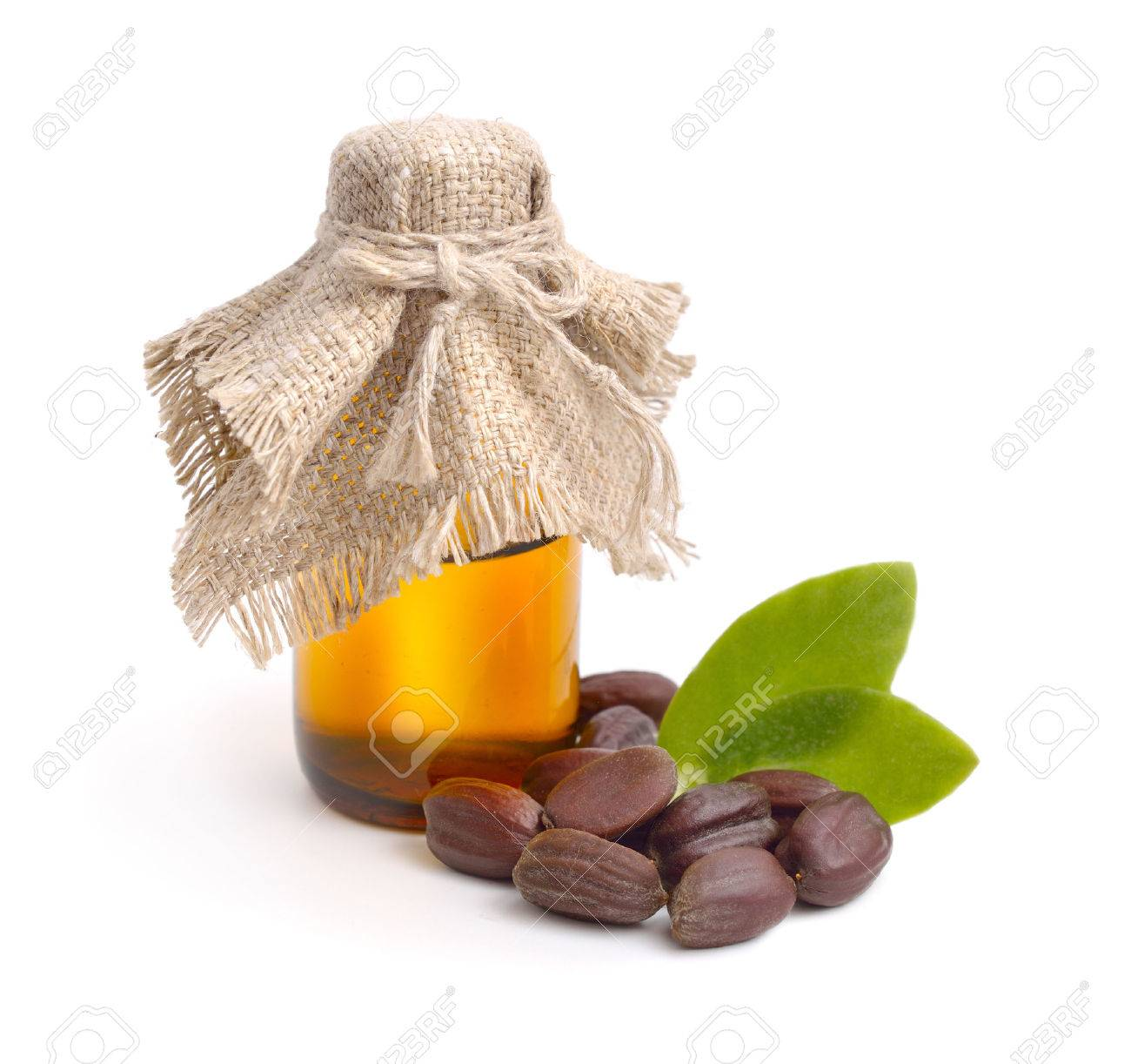 Jojoba (Simmondsia chinensis) leaves, seeds with oil. Isolated on withe beckground. - 47606765