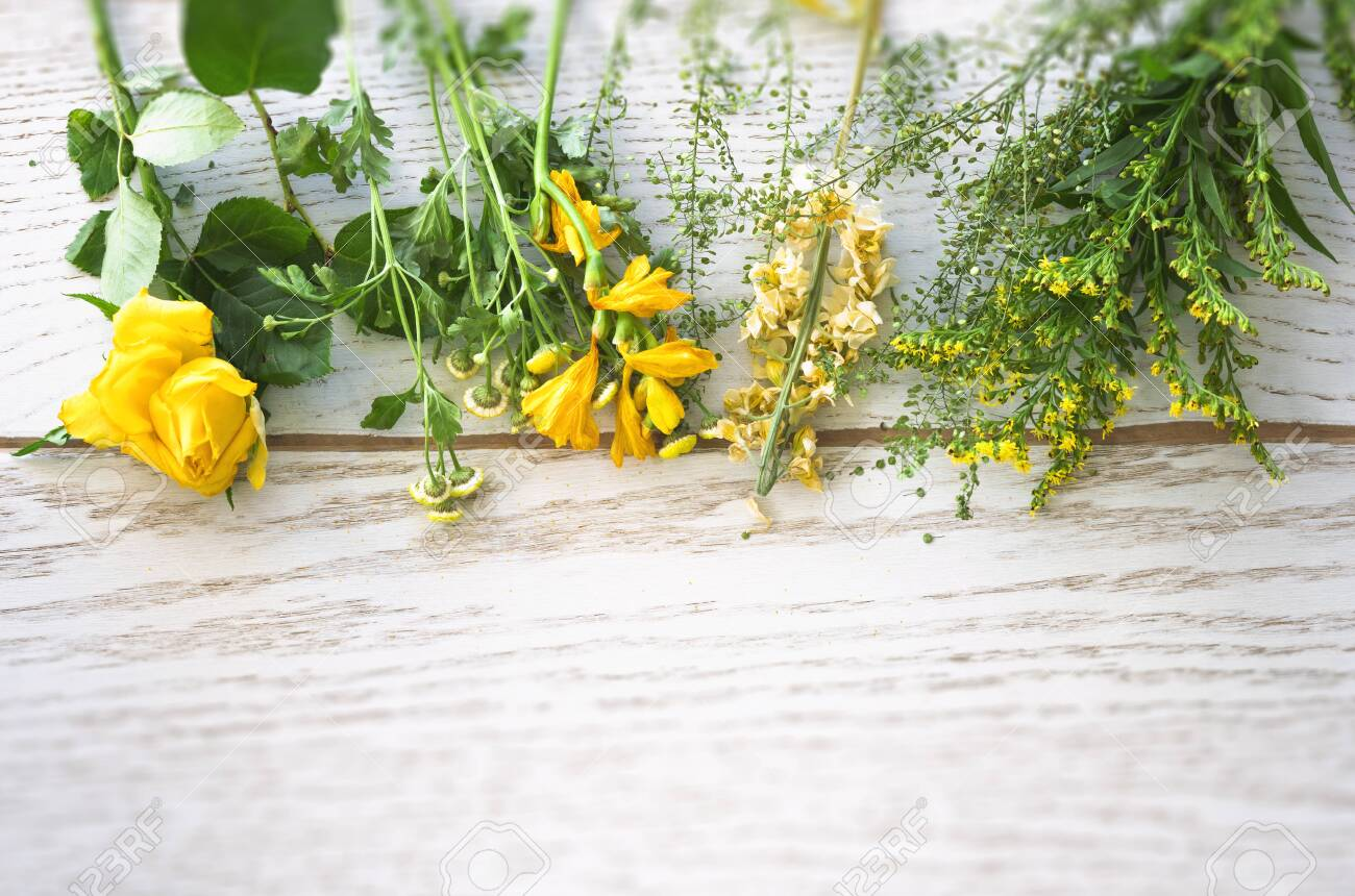 Colorful flowers in yellow and green on a wooden background in the springtime - 146232001