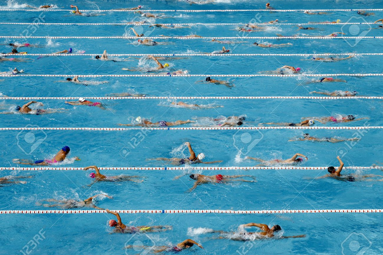 Competition swimming pool crowded of swimmers training