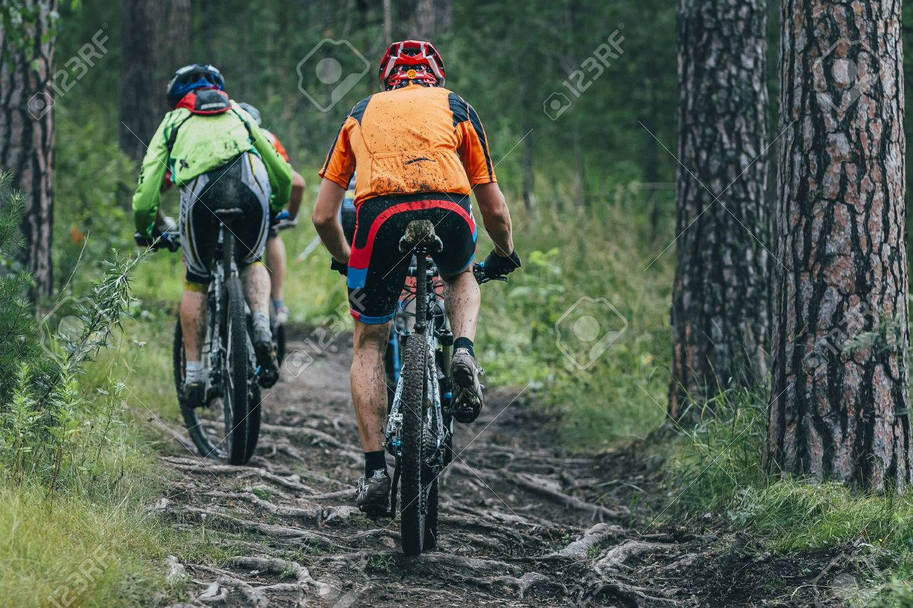 two cyclist mountainbiker during a race in the woods - 45177572