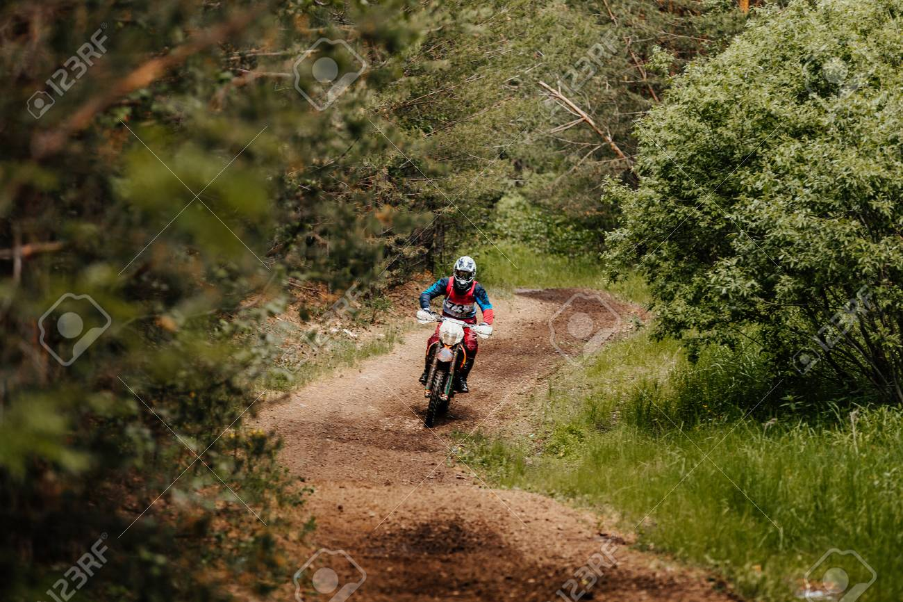 enduro athlete on bike rides in forest trial racing motocross - 81431946