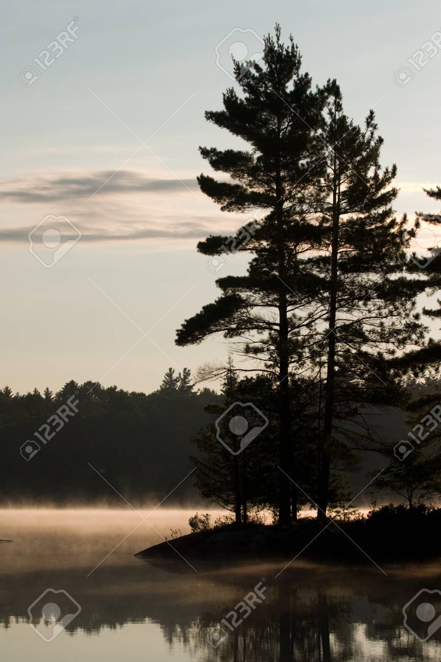 Trees, lake and early morning fog in cottage country. Stock Photo - 11300401