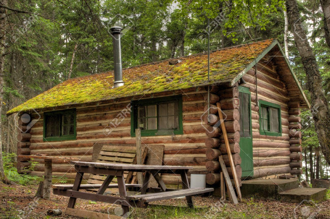 Cabaña De Madera Rodeado Por El Bosque En El Parque Provincial Duck ...