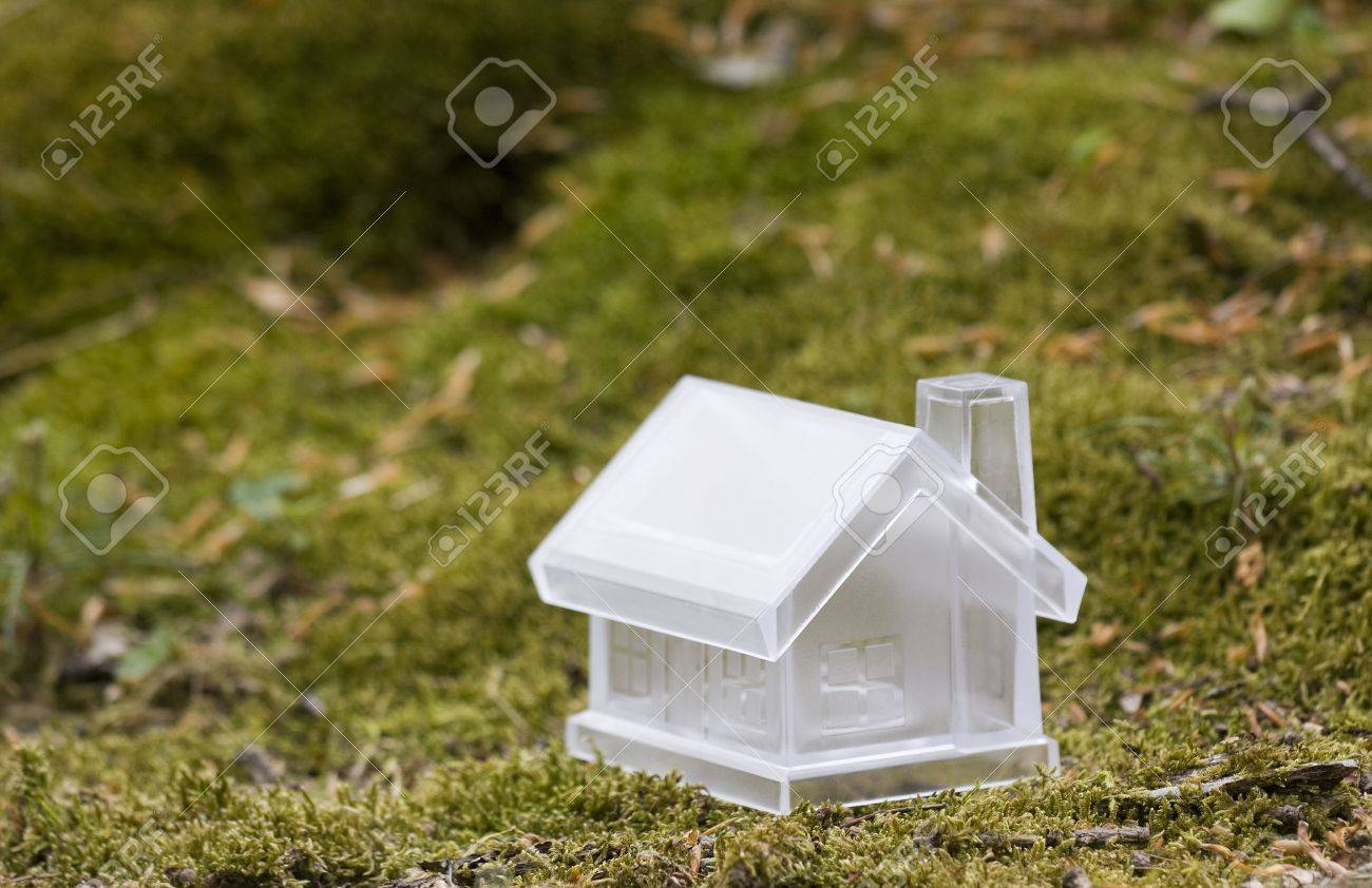 Crystal house over moss Stock Photo - 4991340