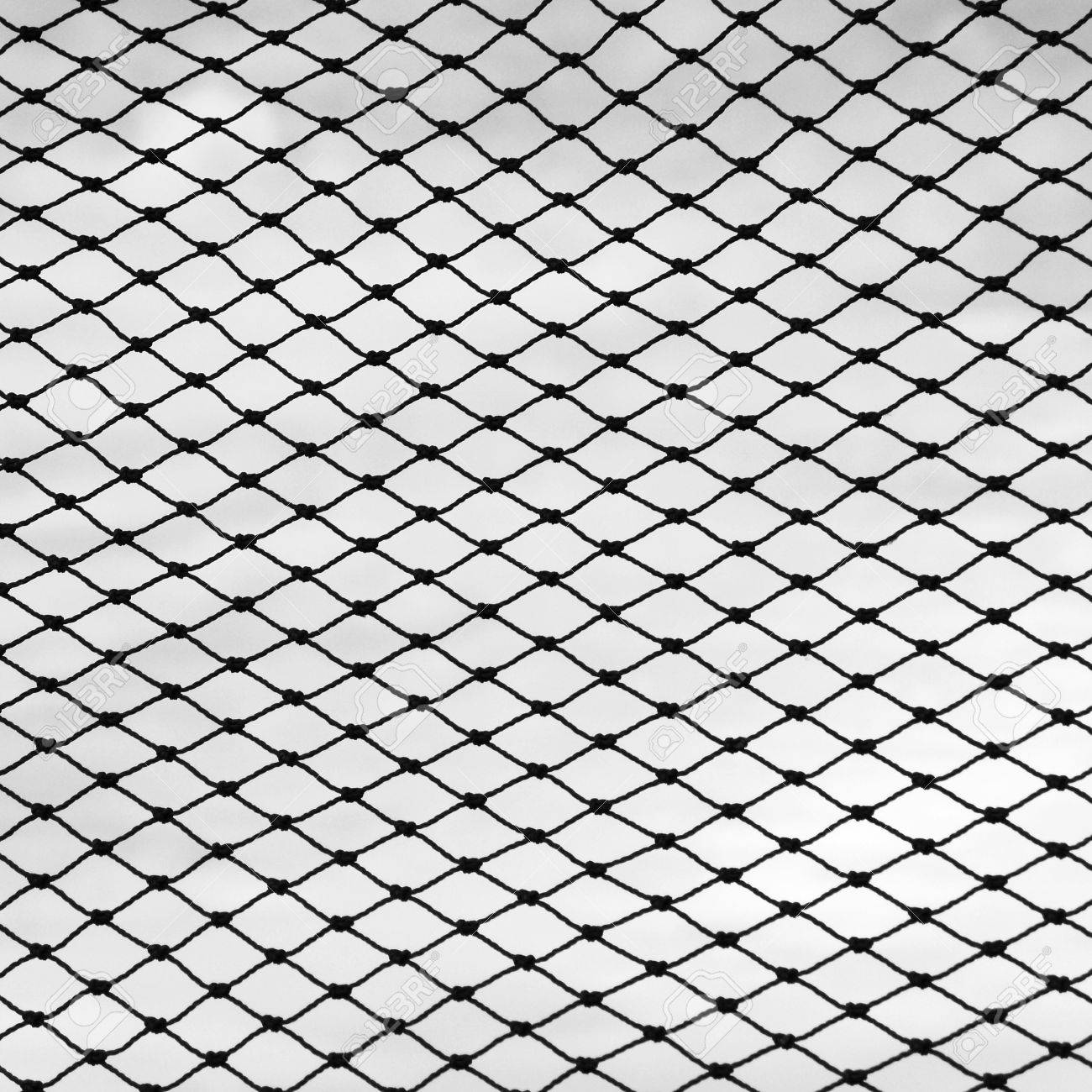 白い背景に、漁網 ロイヤリティ...