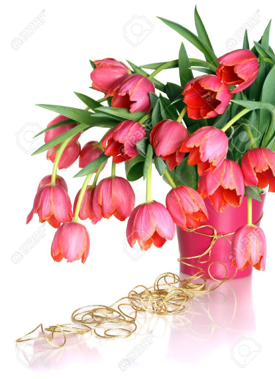 Beautiful bouquet of pink tulips isolated on white background. Stock Photo - 8477600