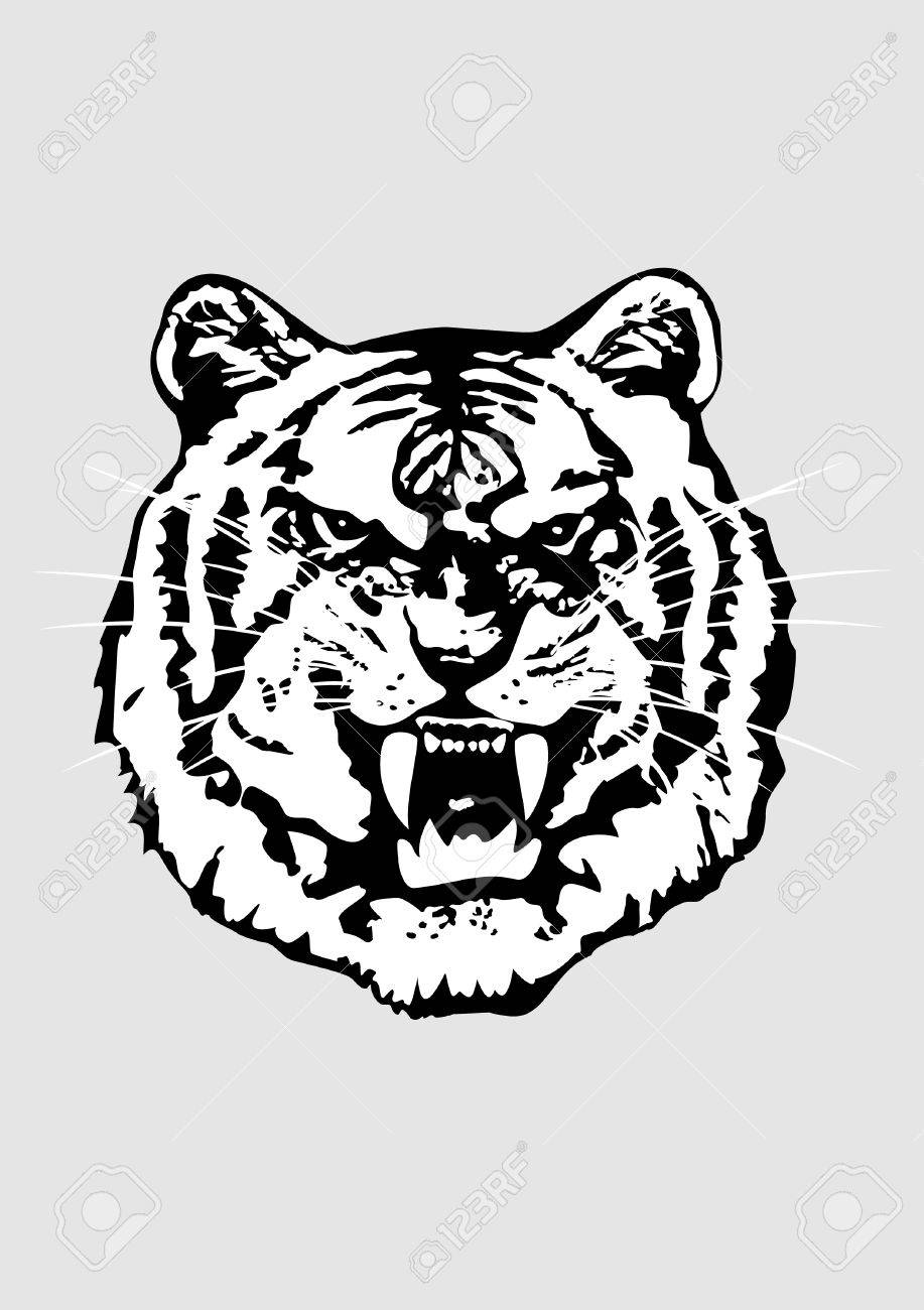 The vector image of a head of a tiger in a format EPS8 Stock Vector - 4875737