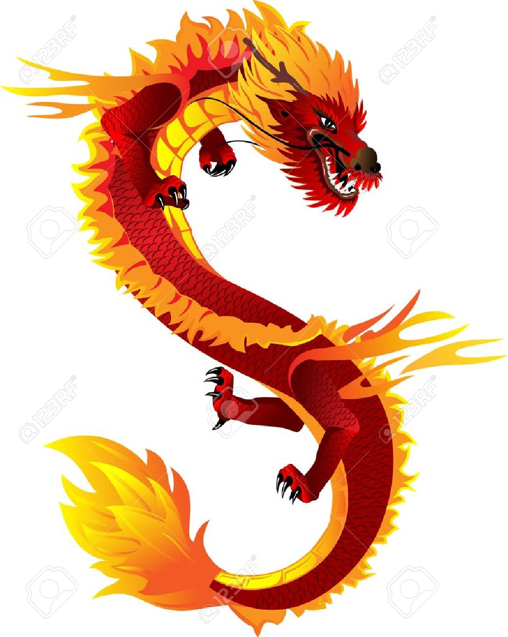 The vector image of head of the Asian dragon Stock Vector - 11146889