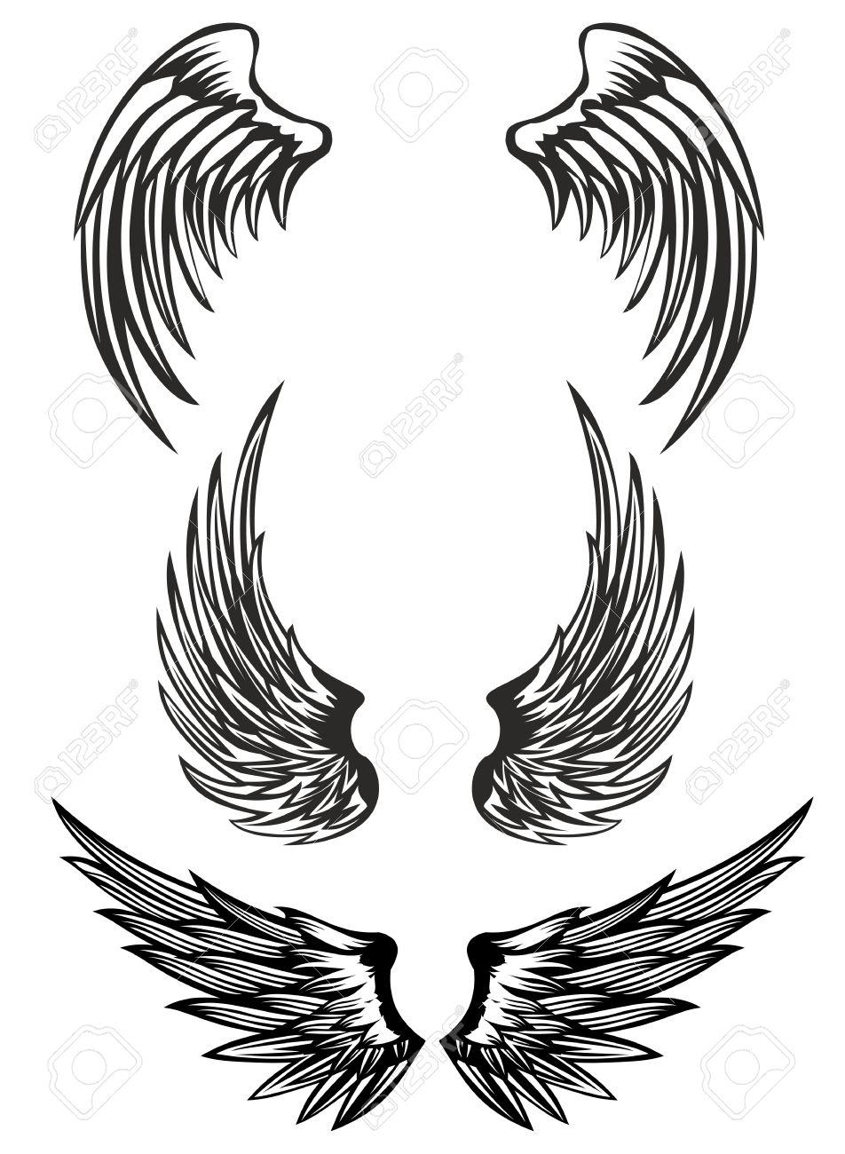 Vector illustration wings set Stock Vector - 12963378