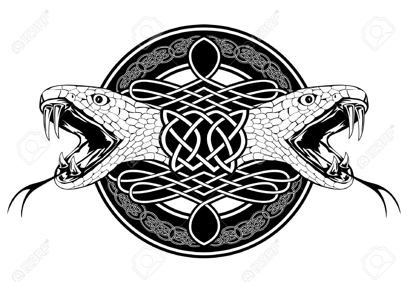 The image of head of snake and Celtic patterns Stock Vector - 13571427