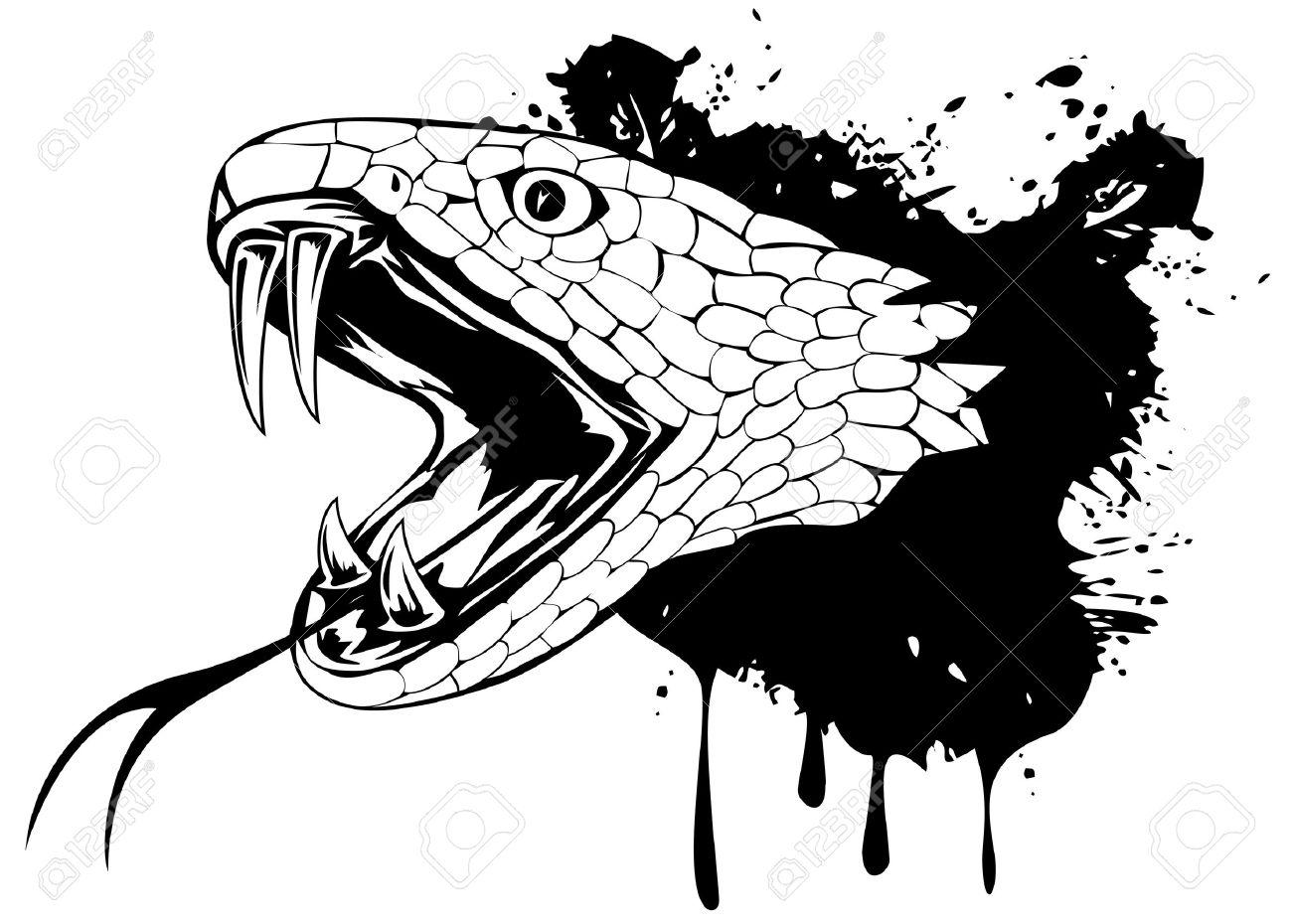 図のヘビの頭
