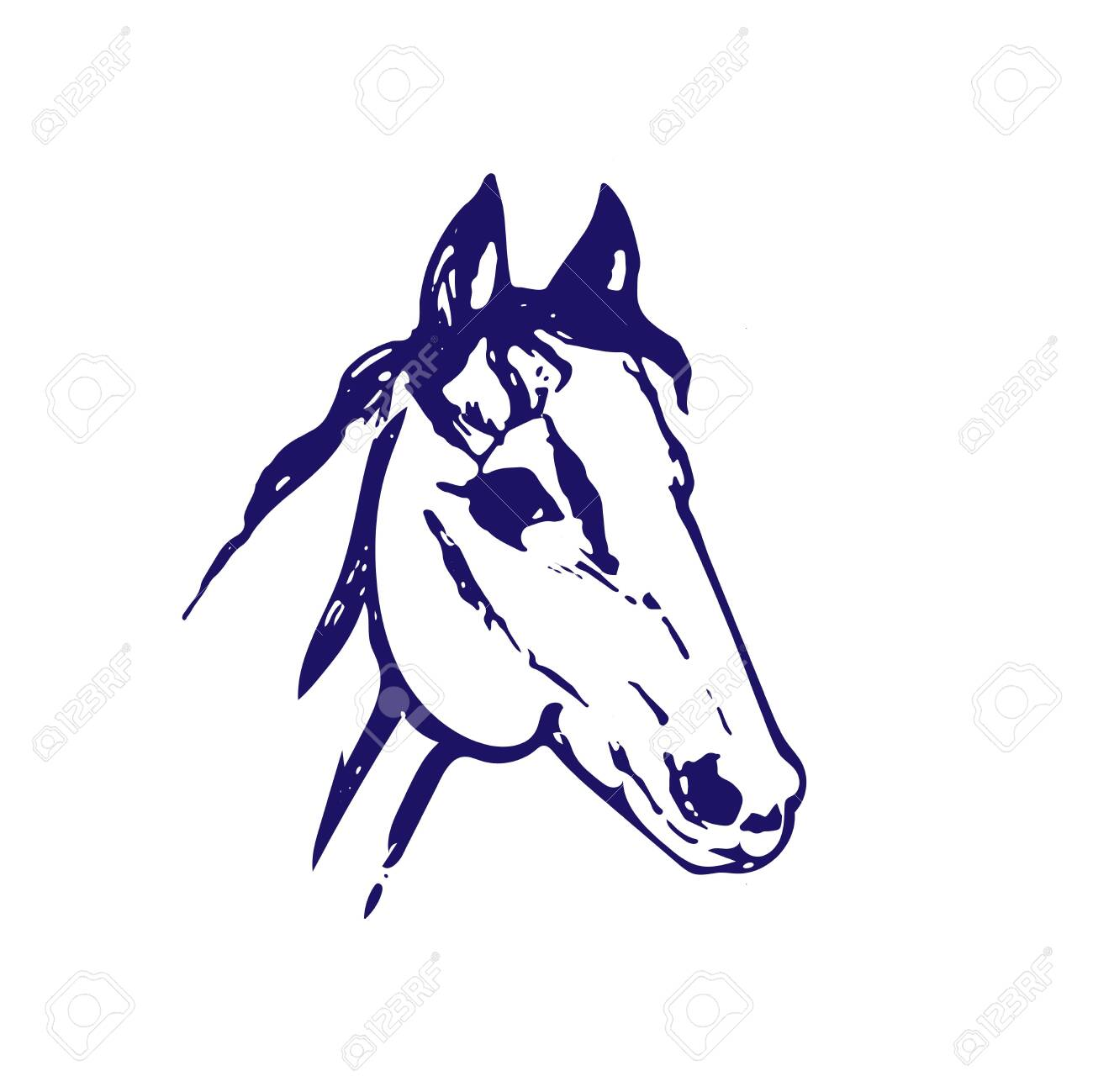 Hand Drawn Sketch Of Horse Head Bllue Ink Line Drawing Isolated Royalty Free Cliparts Vectors And Stock Illustration Image 123938214