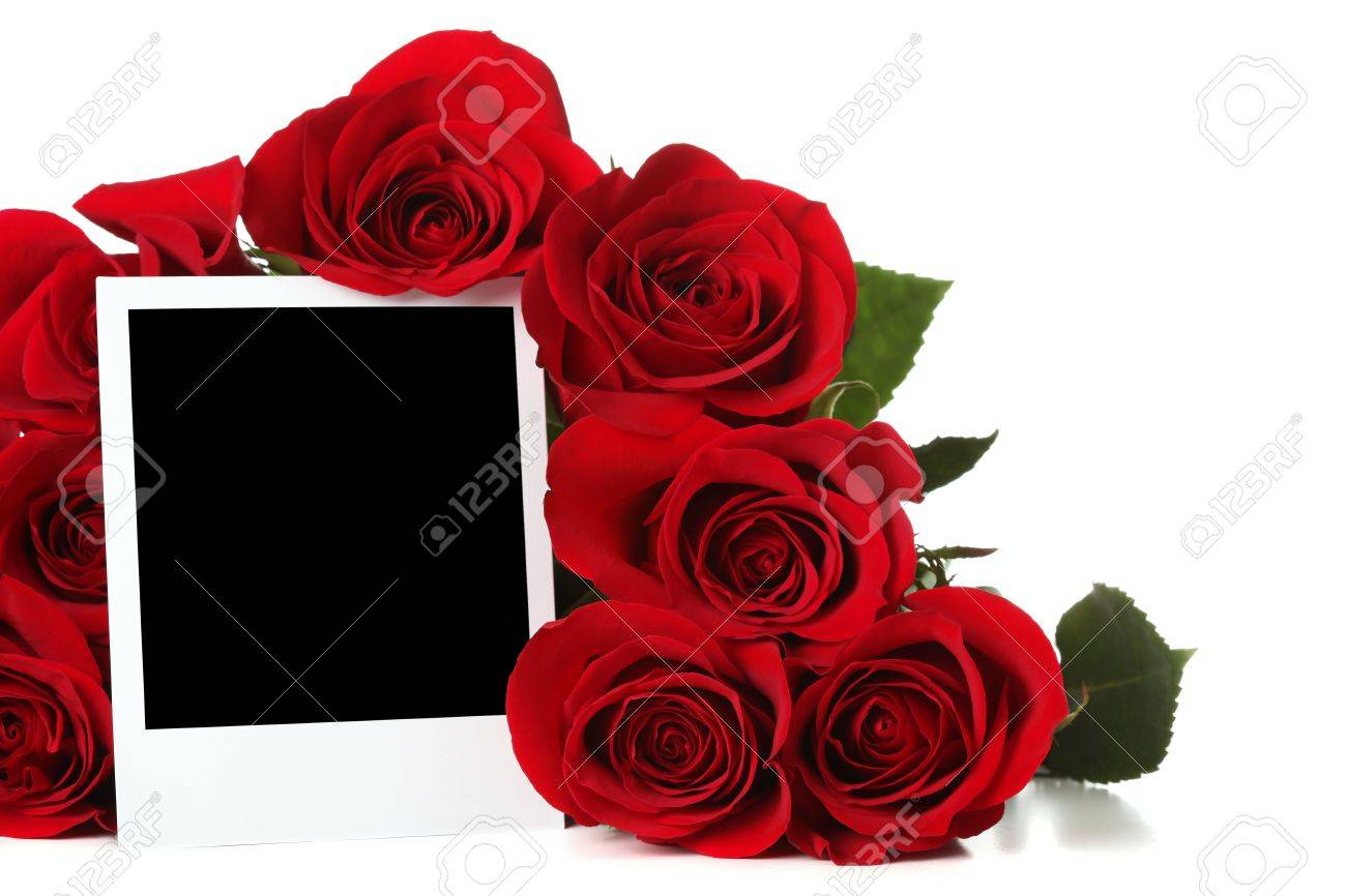 Bouquet of roses with empty photo Stock Photo - 6270856