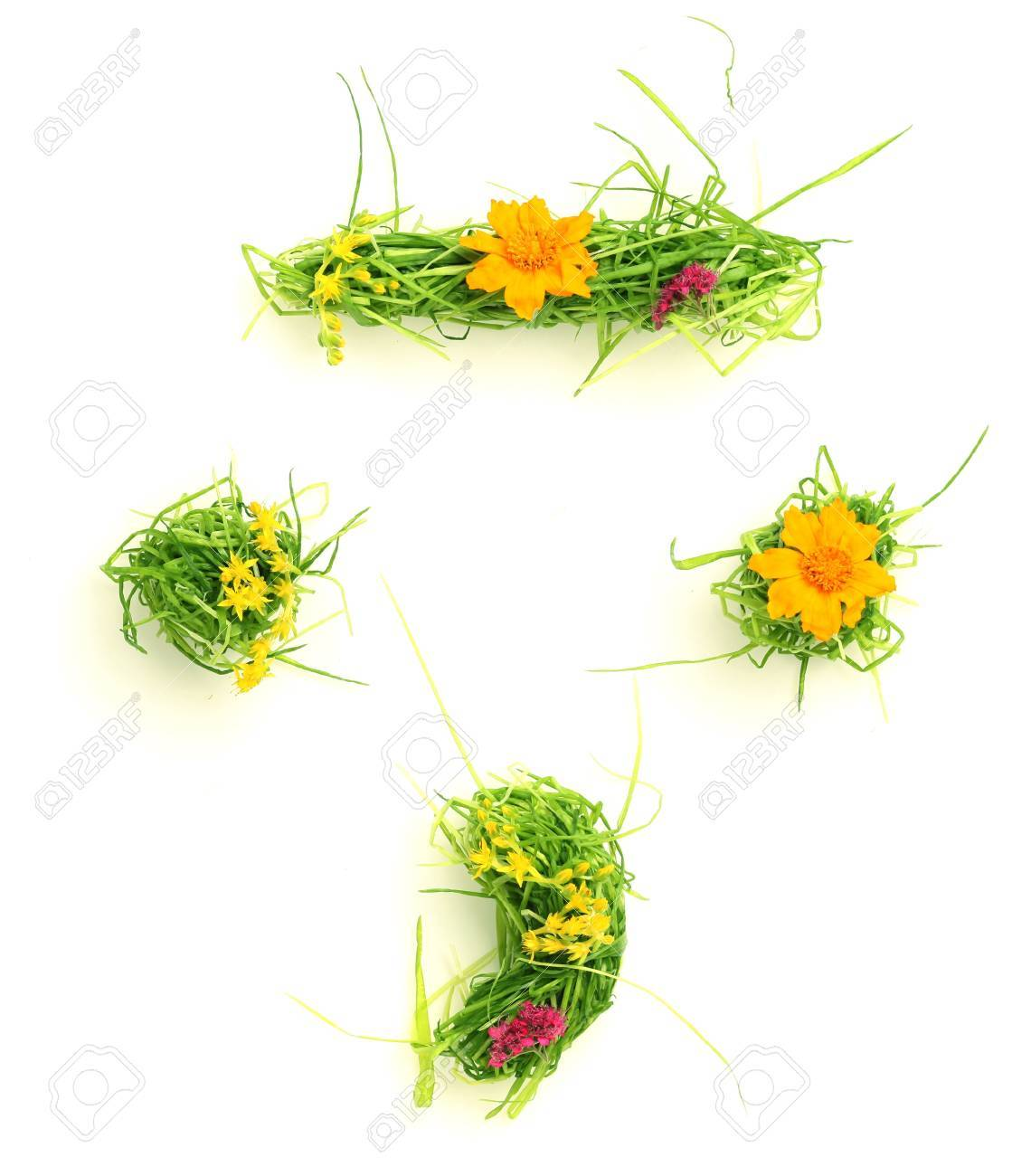 Symbols made of flowers and grass isolated on white Stock Photo - 9448101